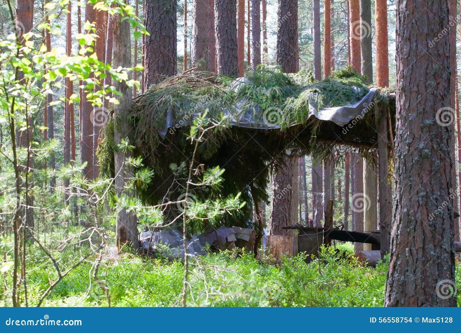 Download Στρατοπέδευση υπαίθρια με τη σκηνή στα ξύλα το καλοκαίρι Στοκ Εικόνες - εικόνα από leisure, φύση: 56558754
