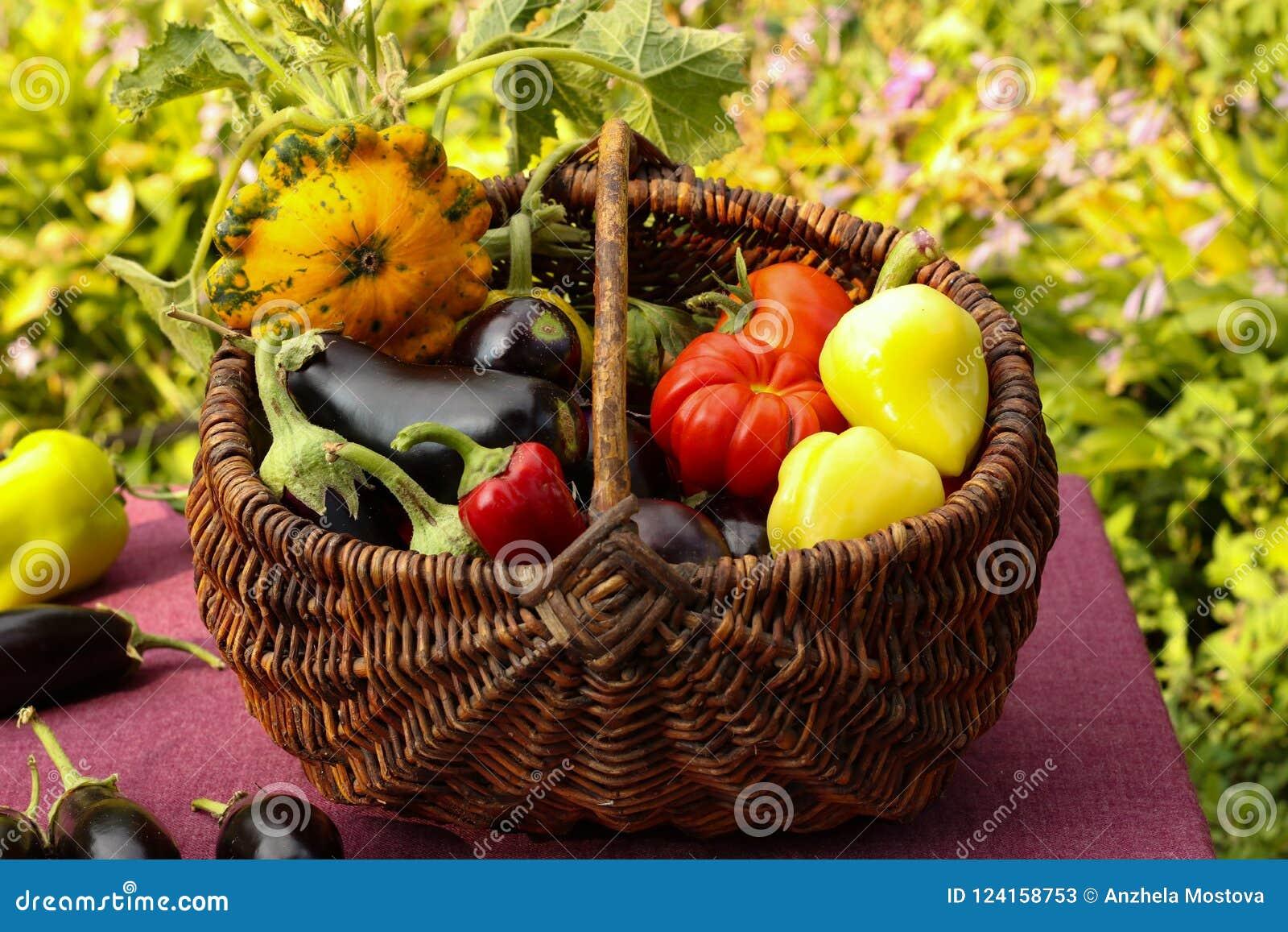 Συγκομιδή φθινοπώρου των λαχανικών σε ένα καλάθι στον κήπο