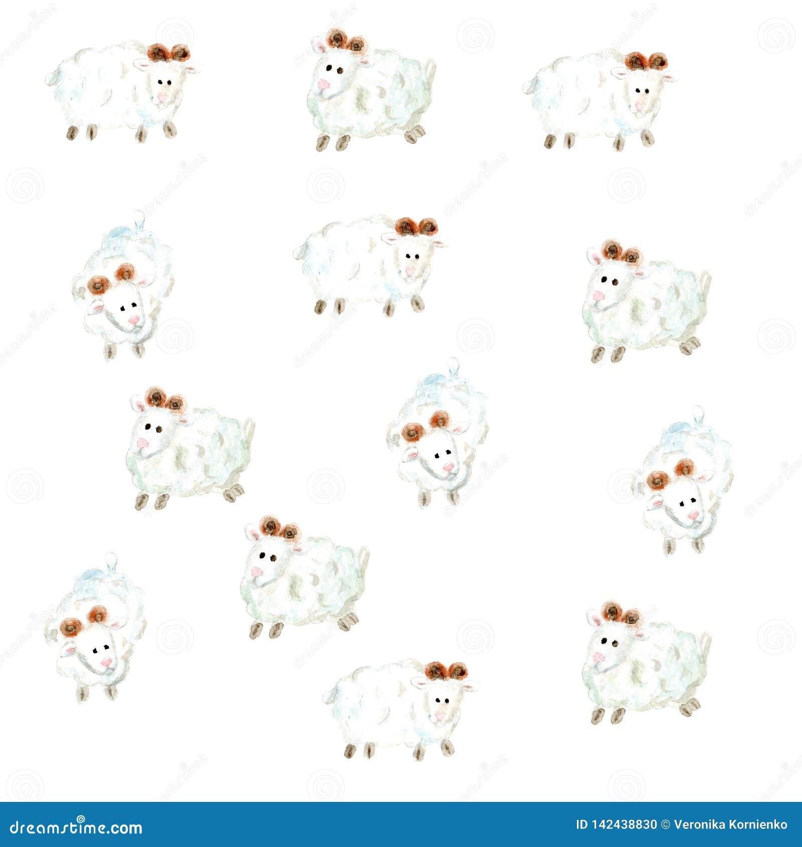 Συμπαθητικό υπόβαθρο sheeps Watercolor στο λευκό