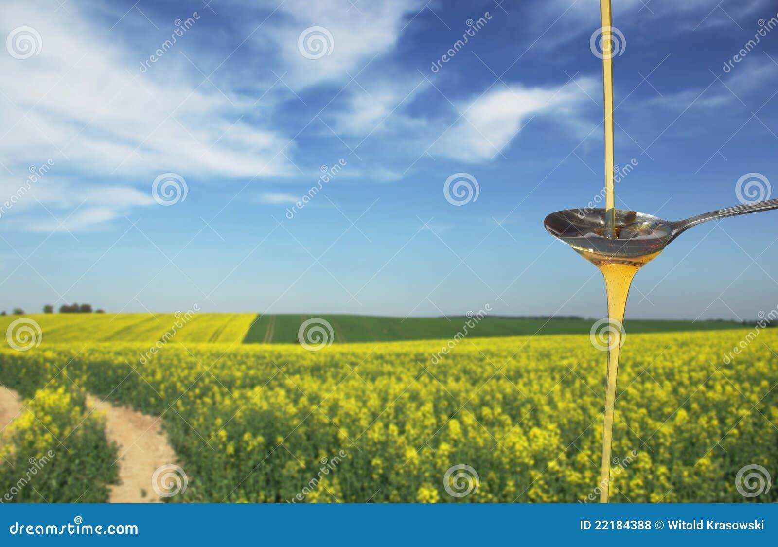 συναπόσπορος πετρελαί&omicro
