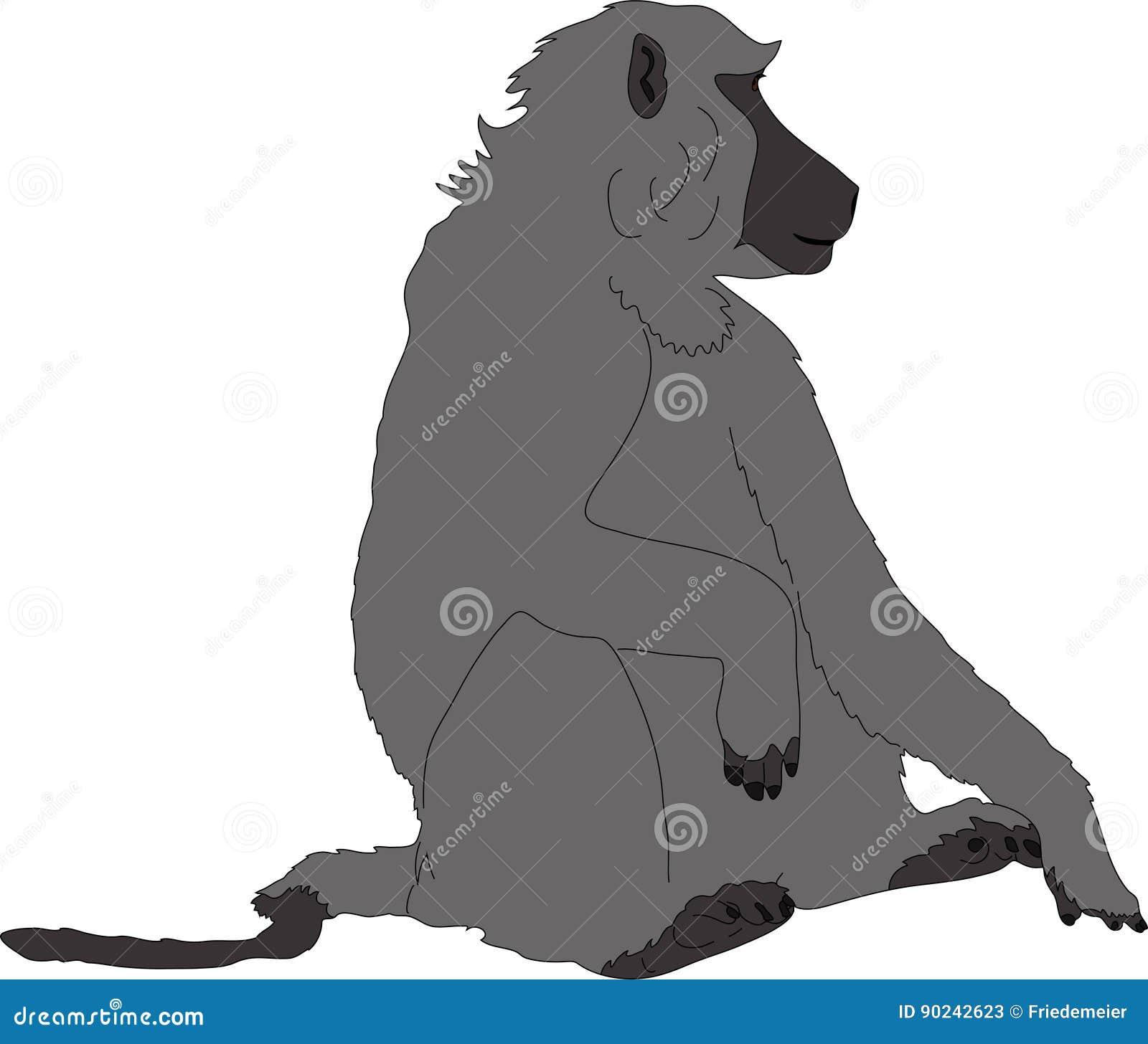 Συρμένο χέρι πορτρέτο άγριο baboon