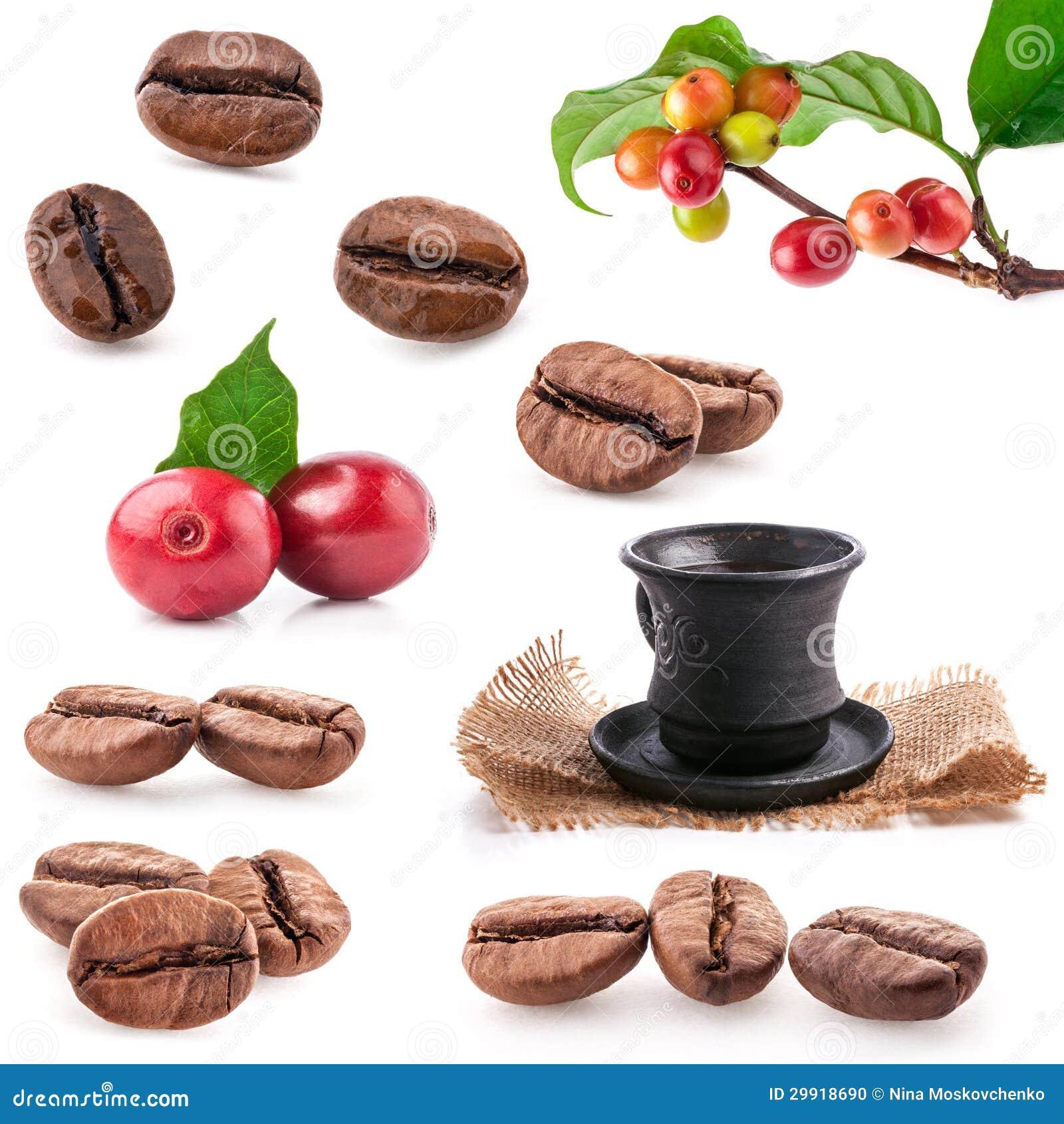 Συλλογές των ψημένων και κόκκινων φασολιών καφέ