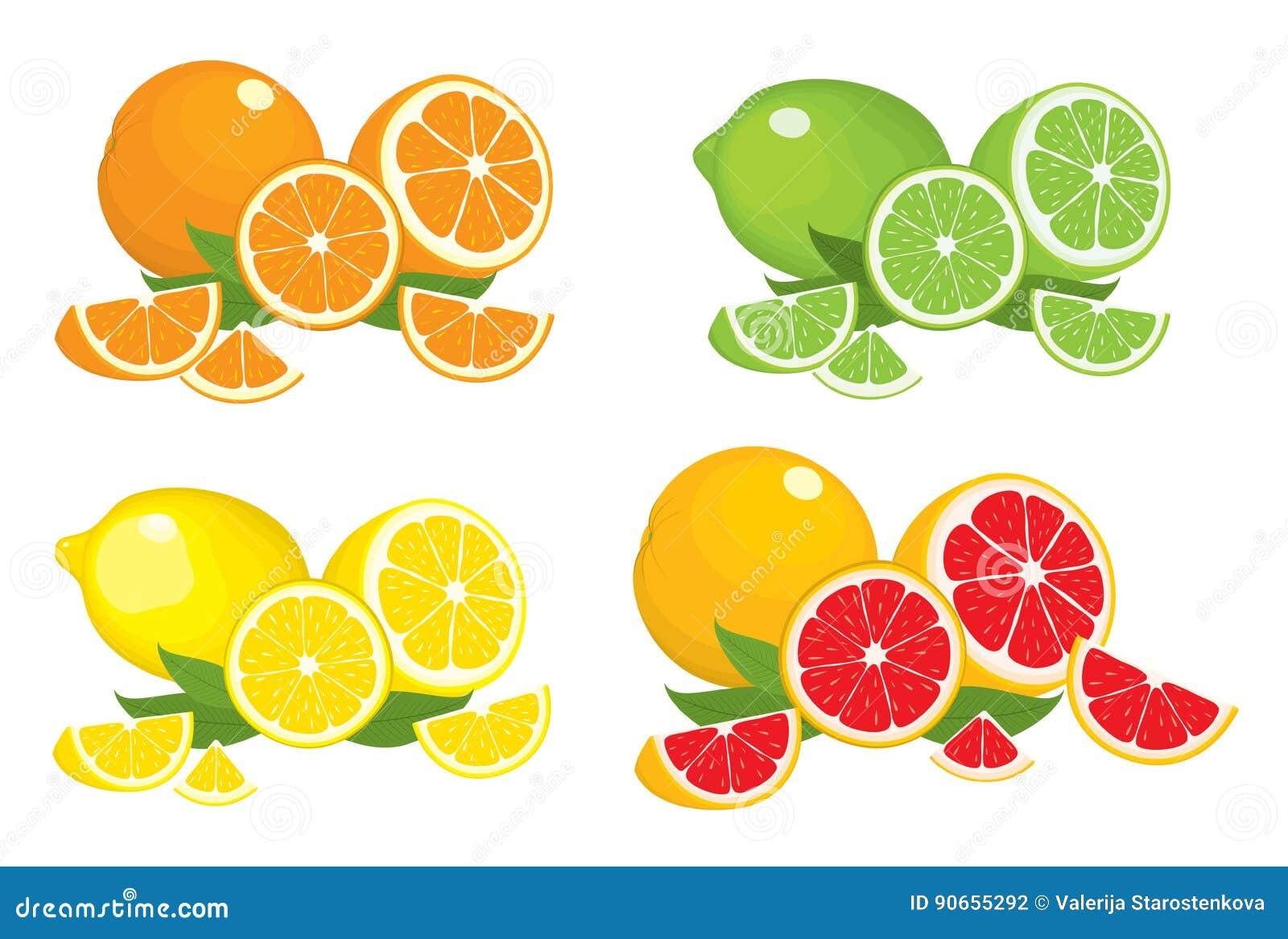 Συλλογή των προϊόντων εσπεριδοειδών - πορτοκάλι, λεμόνι, ασβέστης και γκρέιπφρουτ με τα φύλλα, που απομονώνονται στο άσπρο υπόβαθ