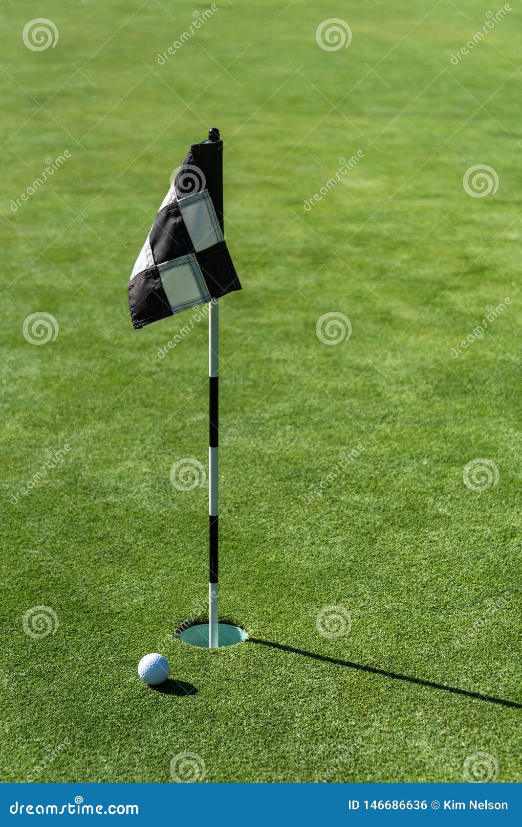 Σφαίρα γκολφ στην τοποθέτηση πρακτικής πράσινη δίπλα στην τρύπα και τη σημαία, ηλιόλουστο πρωί