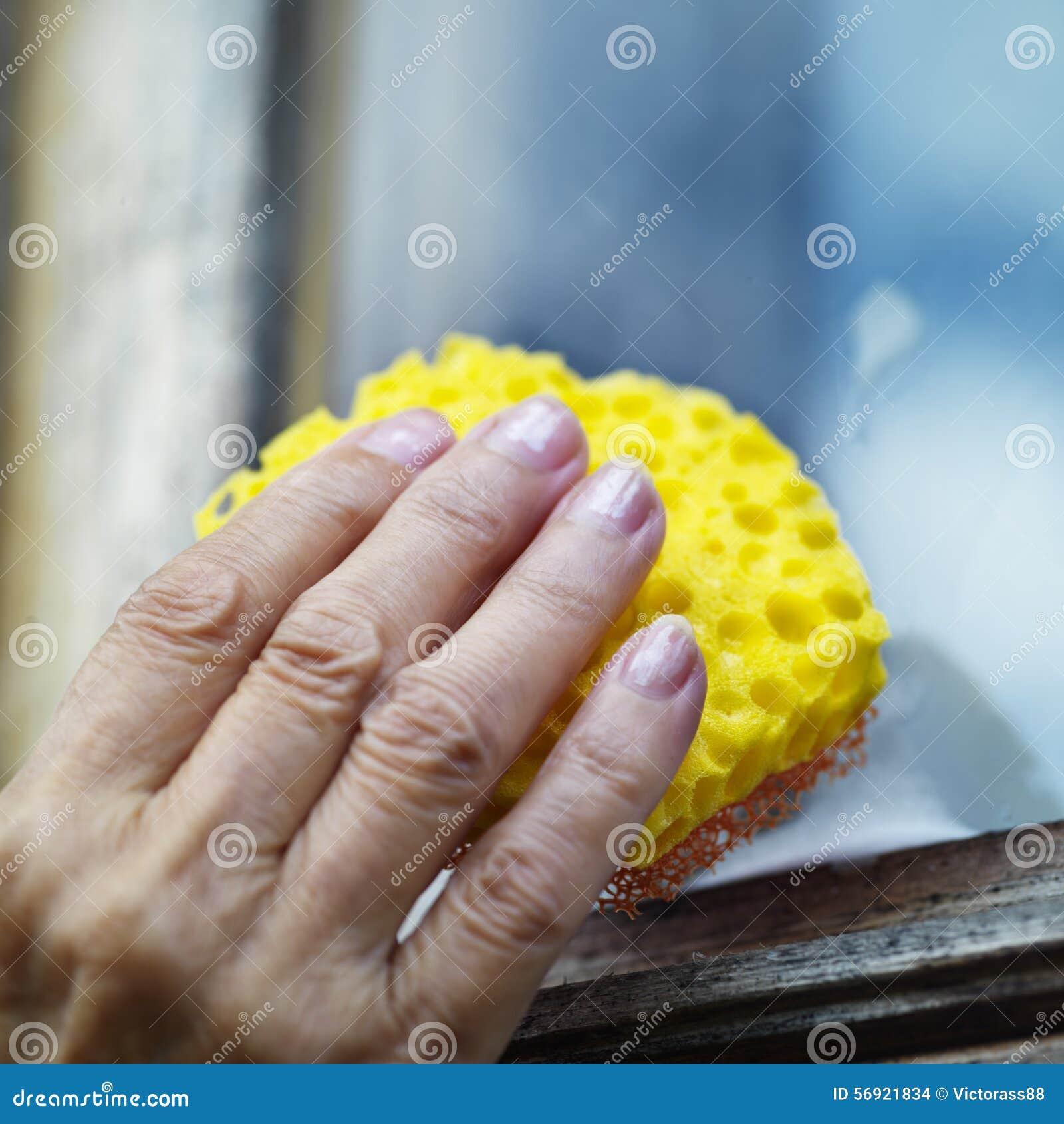 σφουγγάρι χεριών