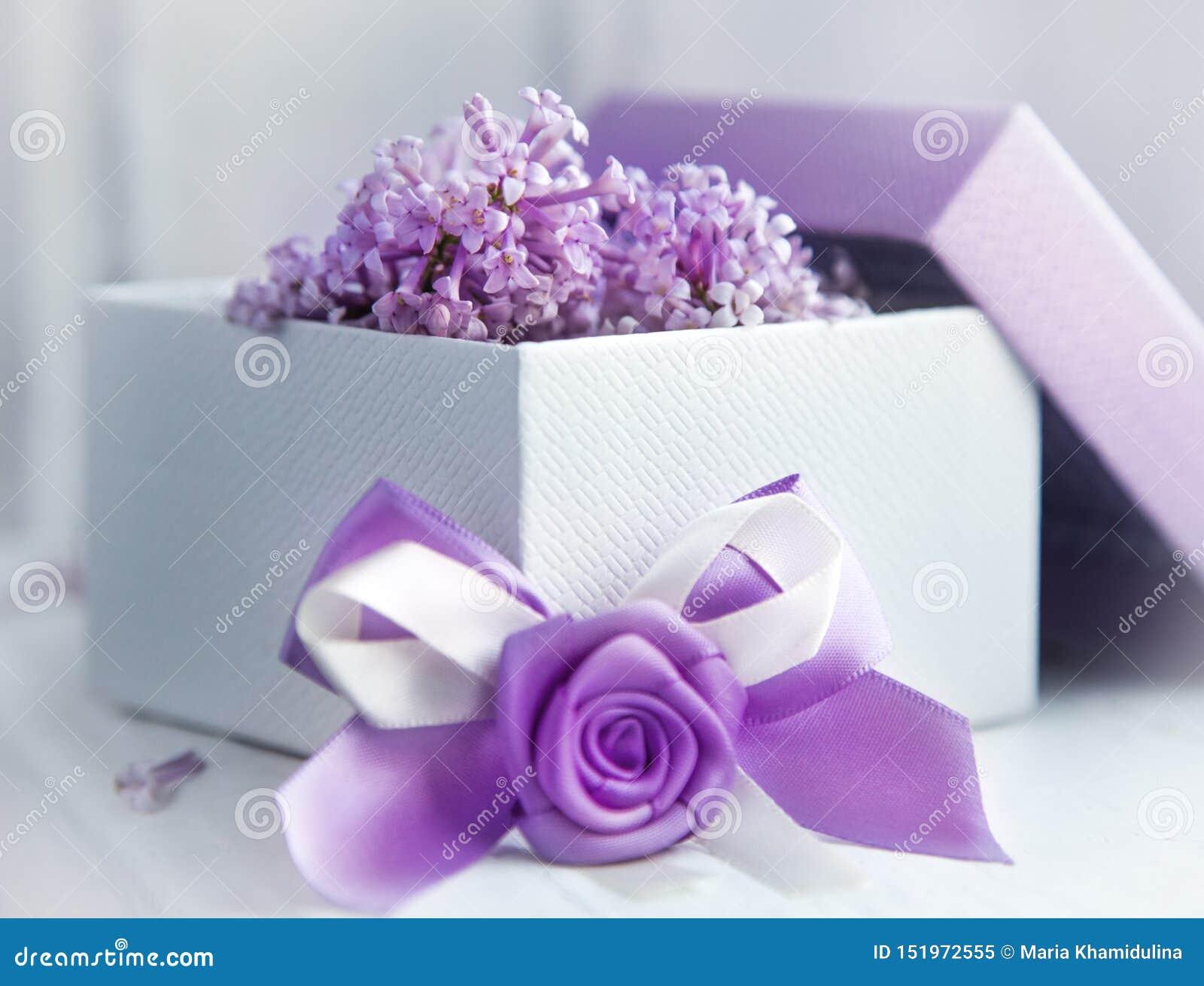 Σχέδιο δώρων στο ιώδες χρώμα Κιβώτιο με την κορδέλλα και την ανθίζοντας πασχαλιά