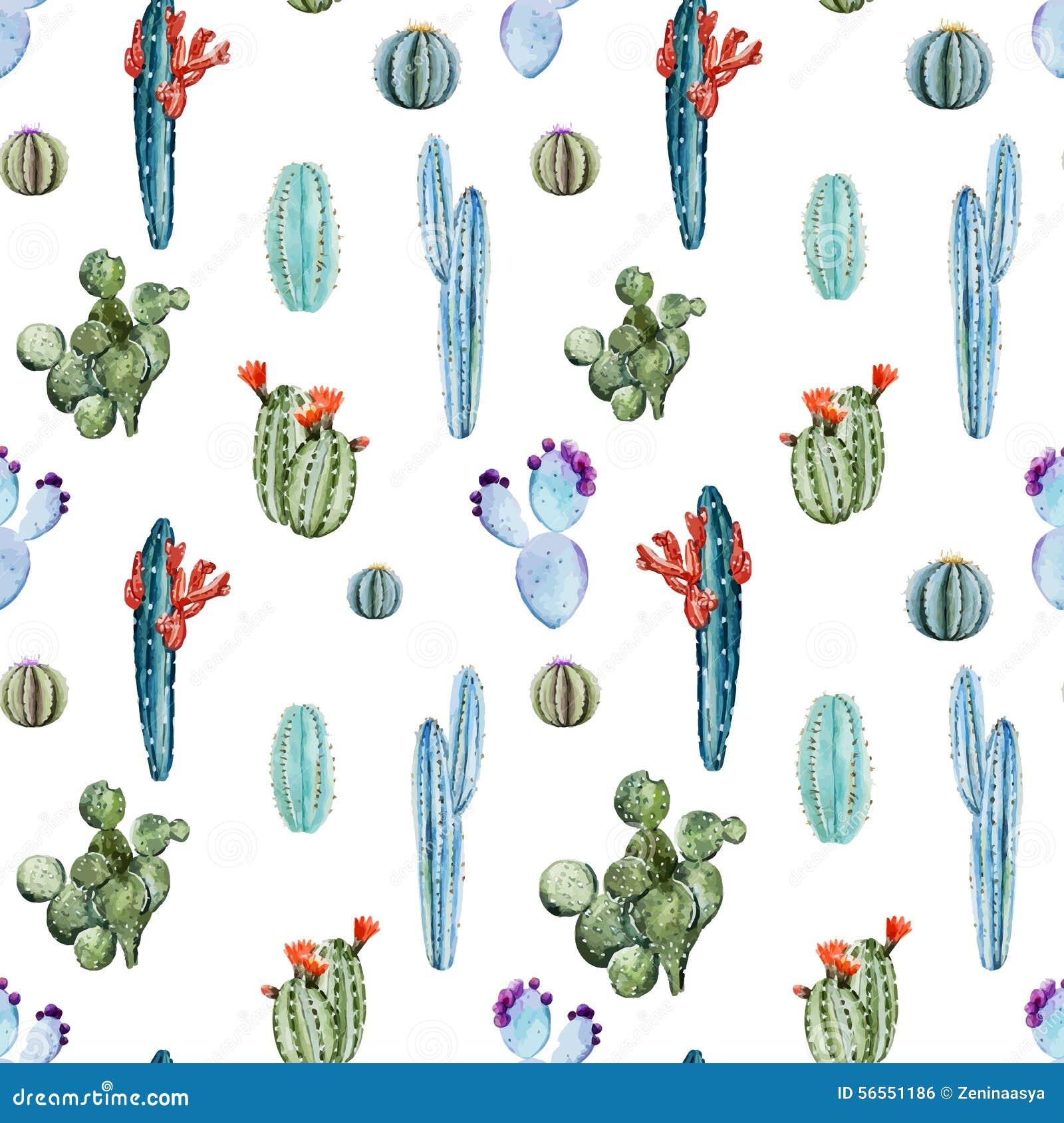 Download Σχέδιο κάκτων Watercolor διανυσματική απεικόνιση. εικονογραφία από στοιχείο - 56551186