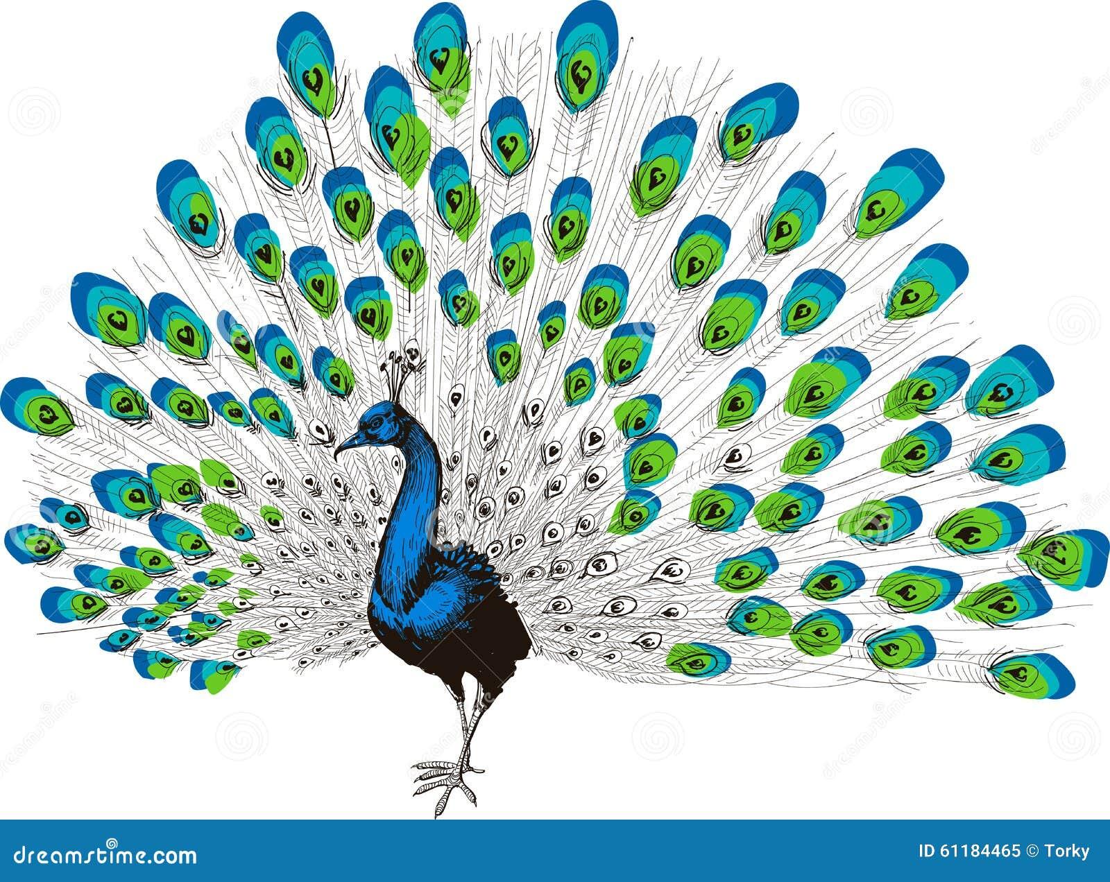 Σχέδιο χεριών Peacock