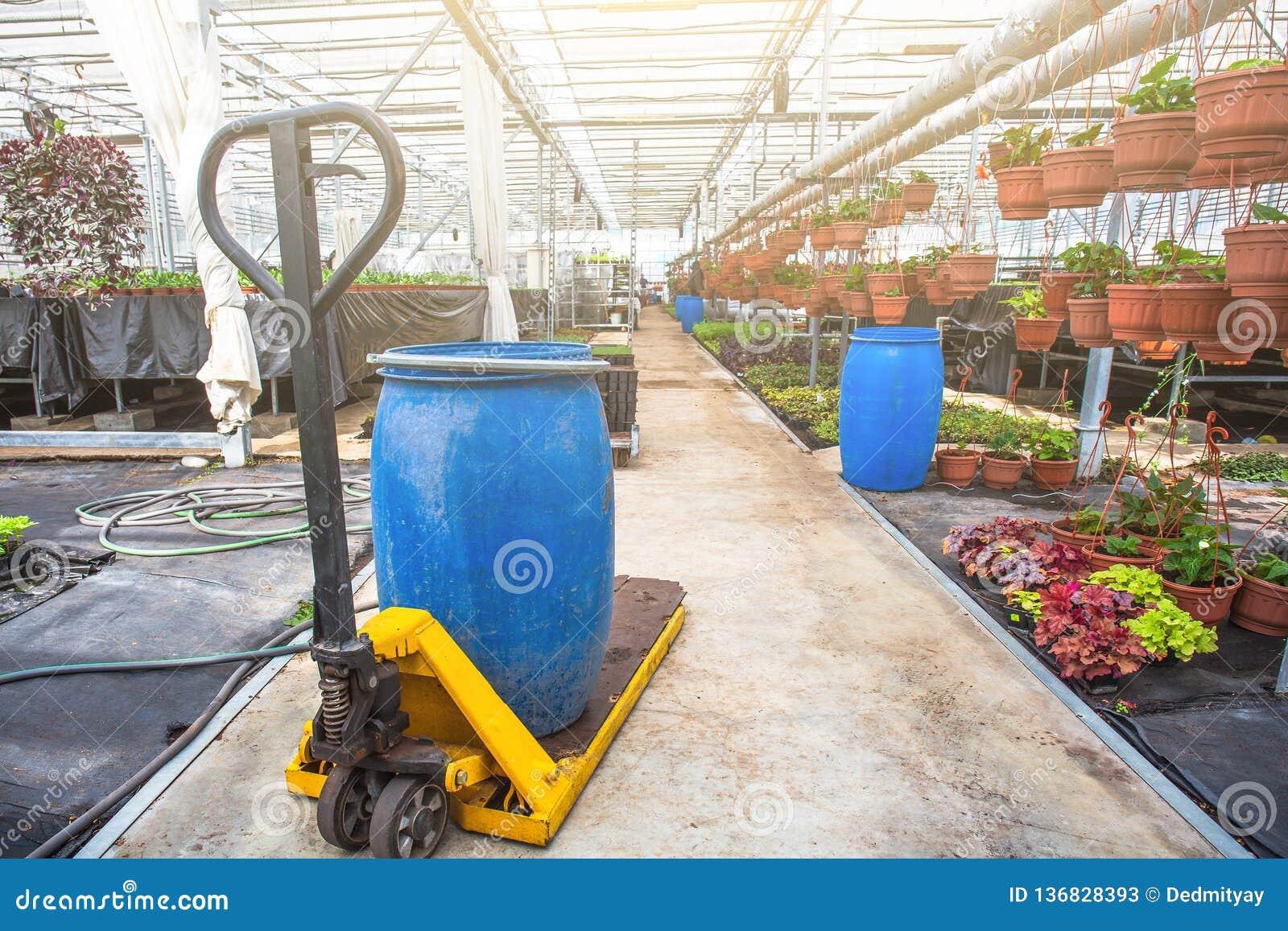 Σύγχρονο υδροπονικό εσωτερικό θερμοκηπίων με τον έλεγχο κλίματος, καλλιέργεια των σπορών, λουλούδια Βιομηχανική δενδροκηποκομία
