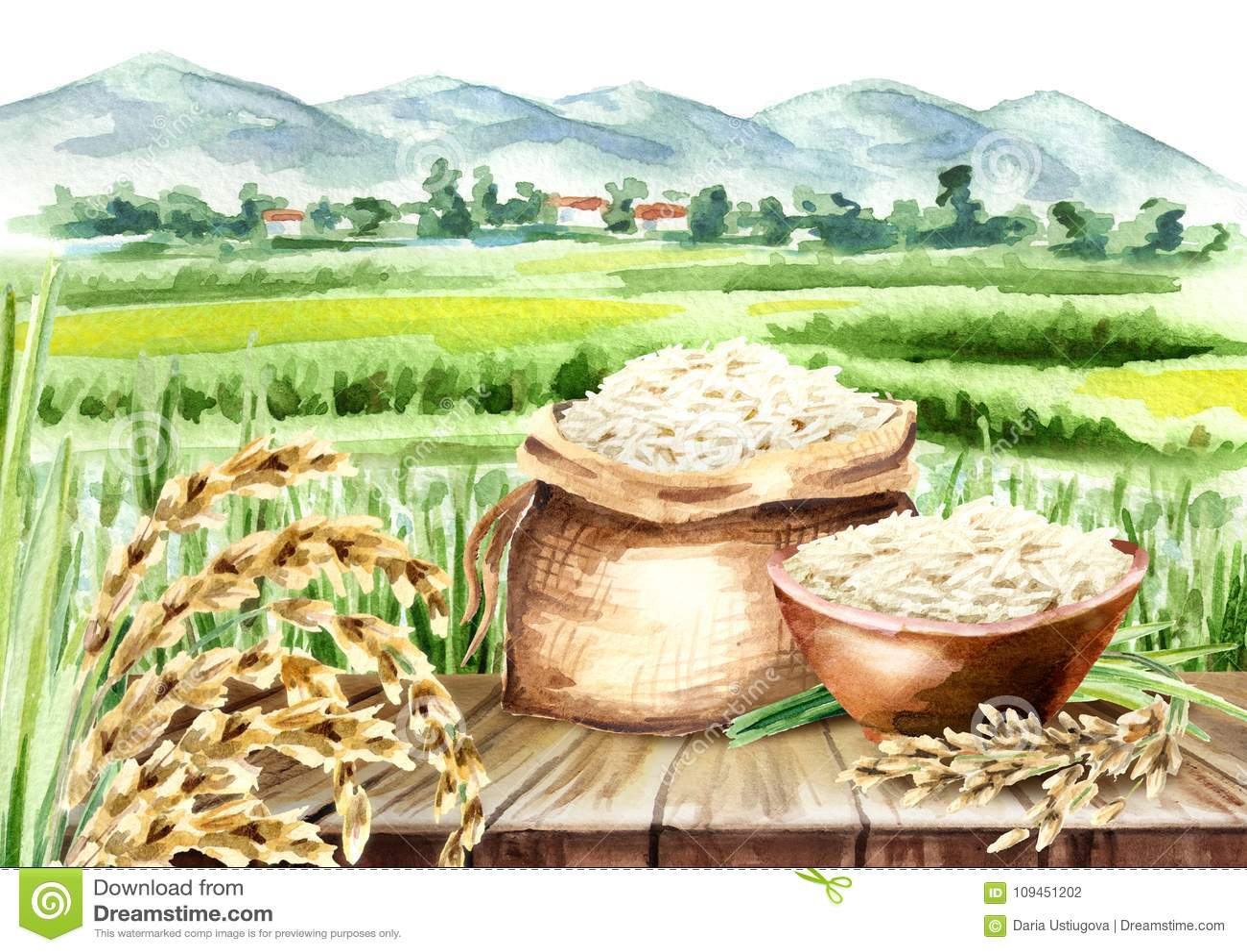 Σύνθεση ρυζιού στο τοπίο με τον τομέα Χέρι Watercolor που σύρεται