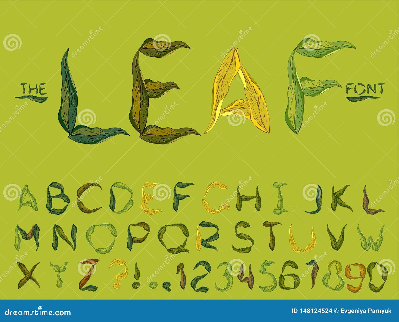 Σύνολο διανυσματικής αφηρημένης πηγής και αλφάβητου