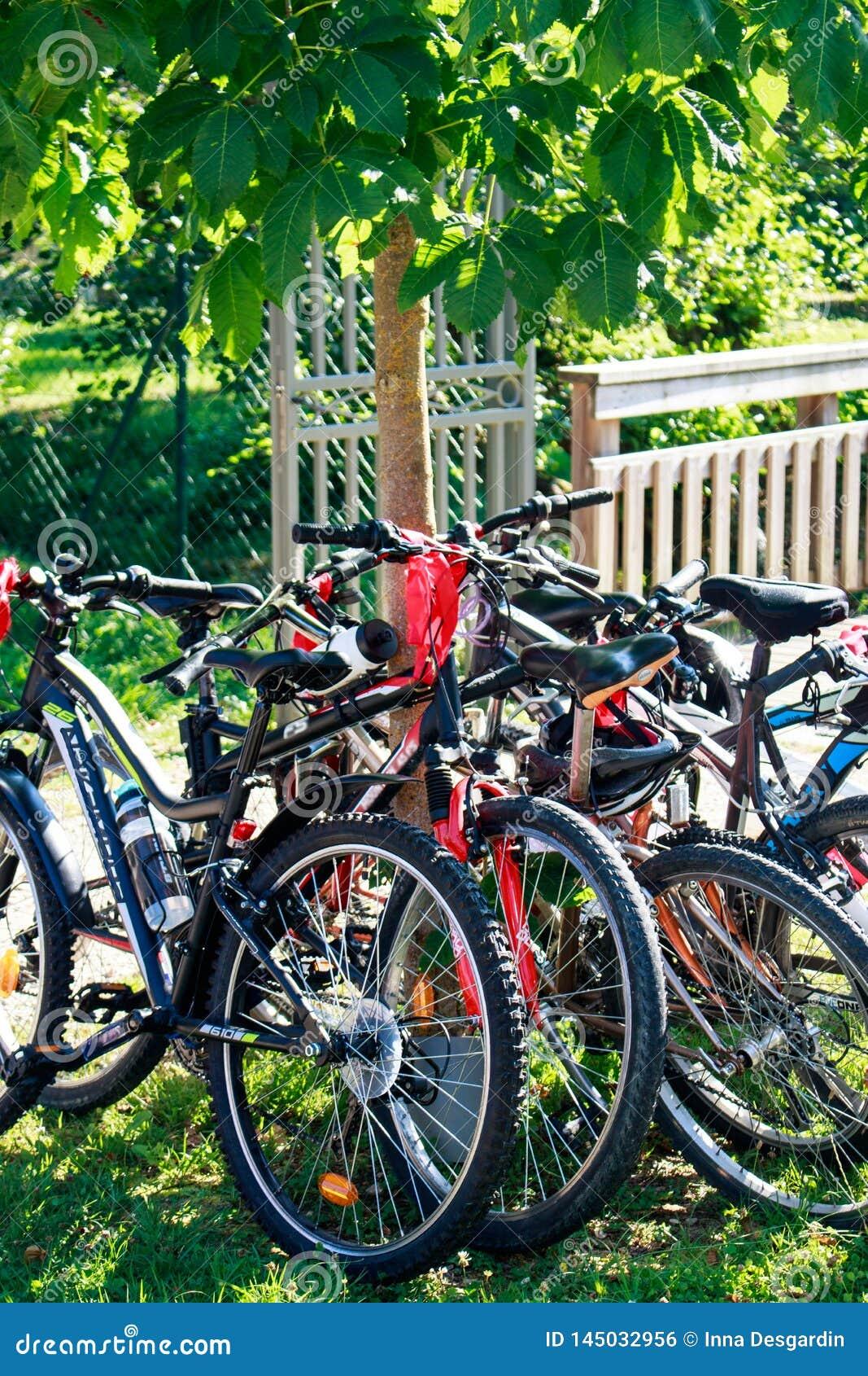 Σύνολο ποδηλάτων βουνών στο πάρκο που περιμένει την αναχώρηση του γύρ