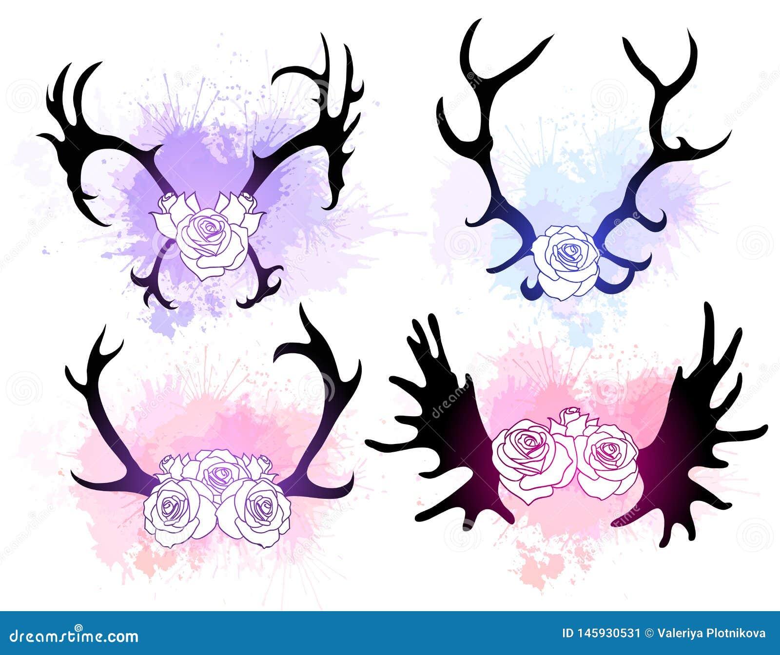 Σύνολο σκιαγραφιών blac των κέρατων ελαφιών και αλκών με τα λουλούδια και ήπια τους παφλασμούς watercolor Το αντικείμενο είναι χω