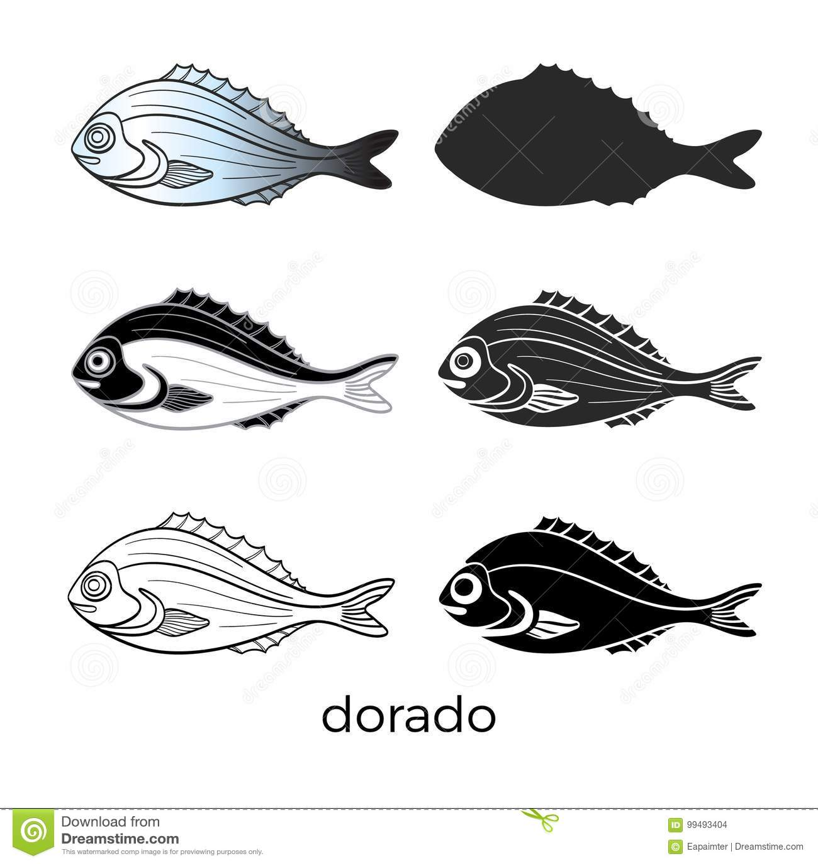 Σύνολο ψαριών θάλασσας στο άσπρο υπόβαθρο dorado Διανυσματική μορφή