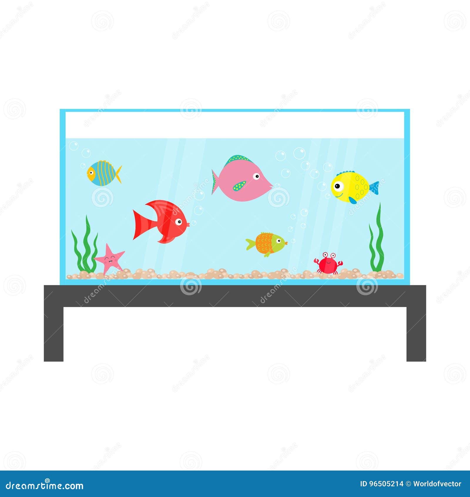 Σύνολο ψαριών που κολυμπά στο ενυδρείο Αστέρι, καβούρι, φύκι, πέτρες, φυσαλίδες, κύματα νερού