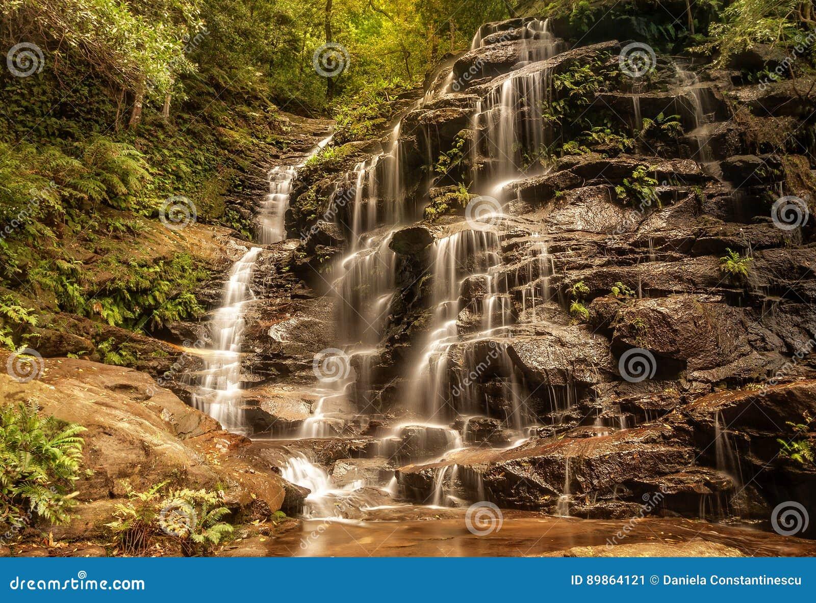 Σύλβια Falls, κοιλάδα των νερών, μπλε βουνά, Αυστραλία