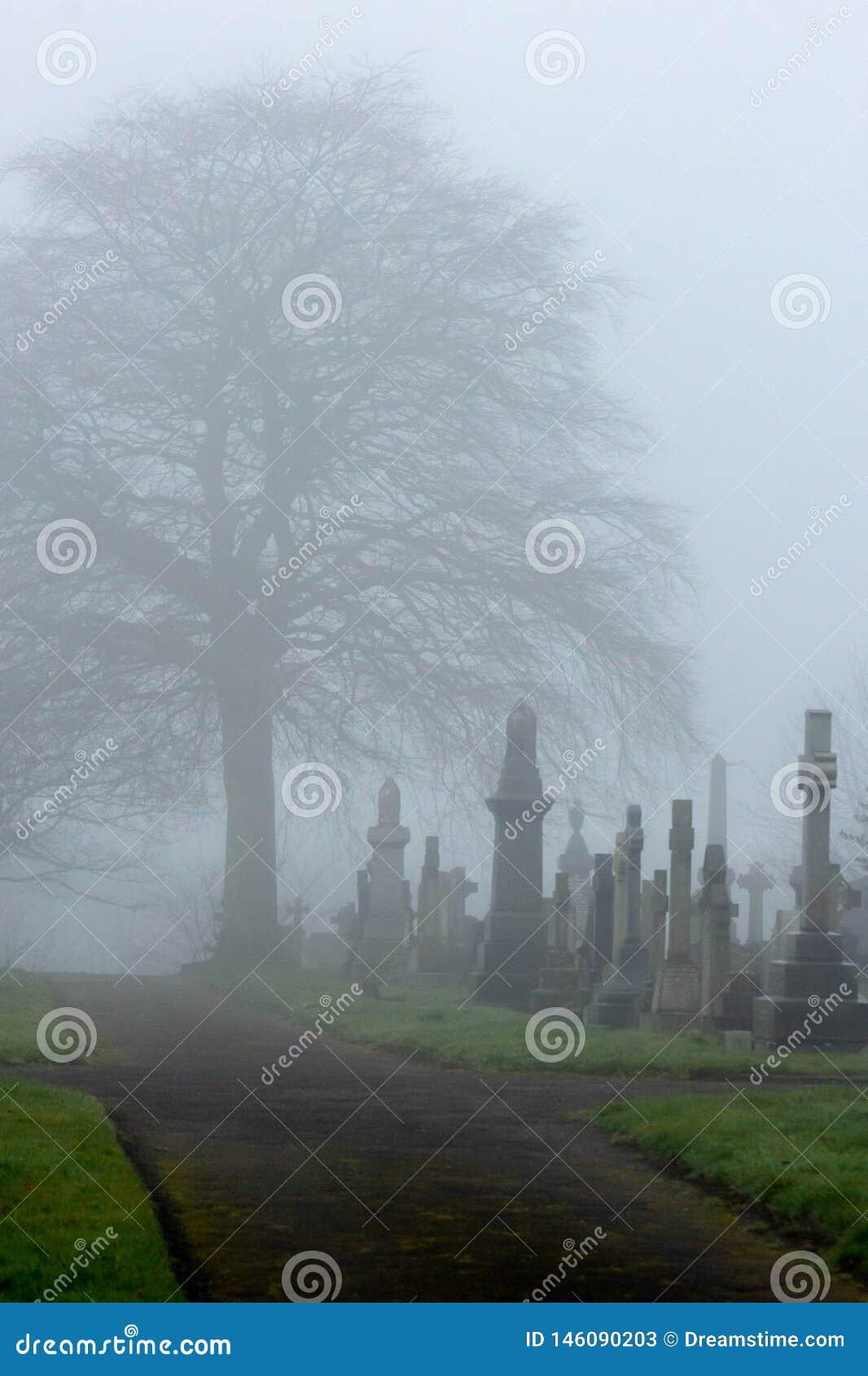 Τάφοι σε μια υδρονέφωση