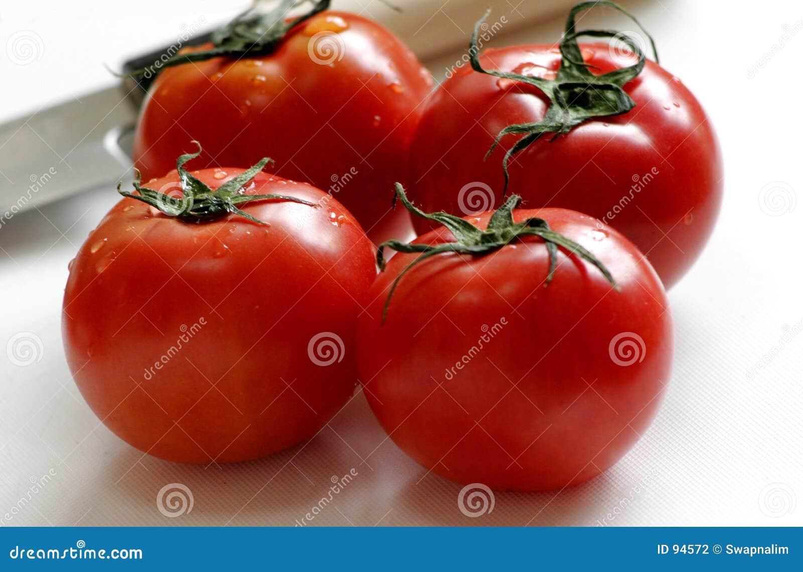 τέσσερις κόκκινες ντομάτες