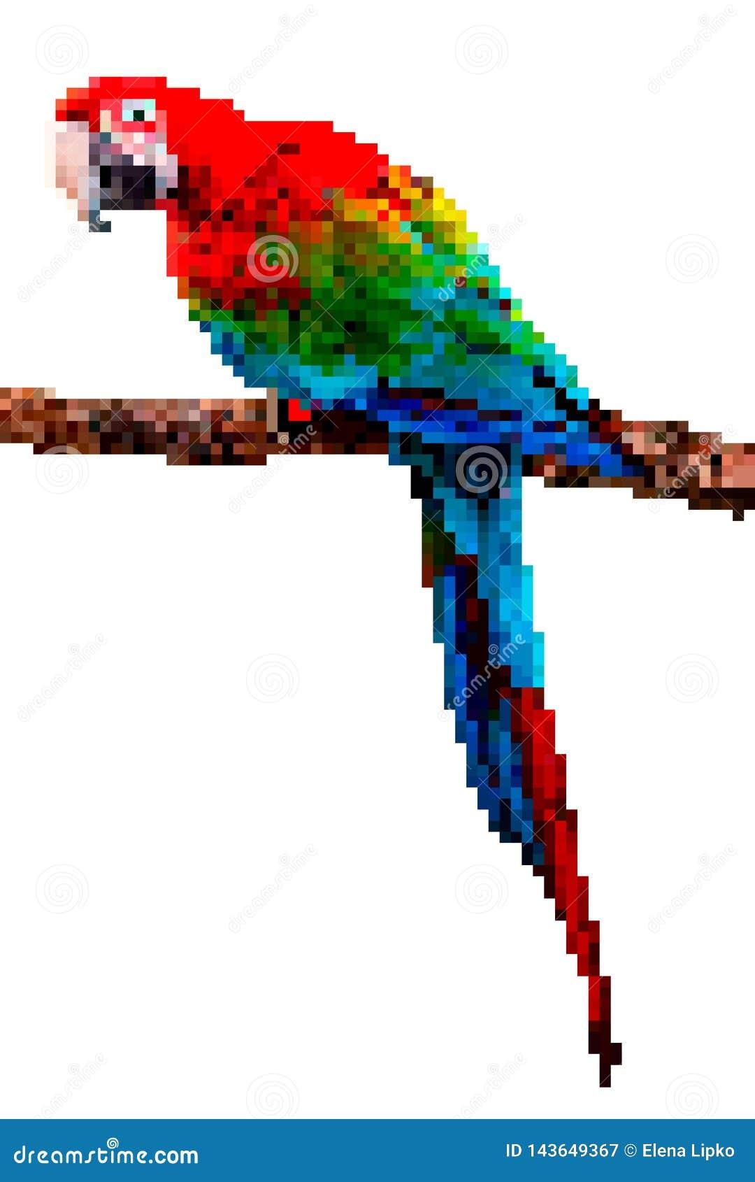 Τέχνη εικονοκυττάρου πουλιών Απεικόνιση εικονοκυττάρου παπαγάλων που απομονώνεται στο άσπρο υπόβαθρο