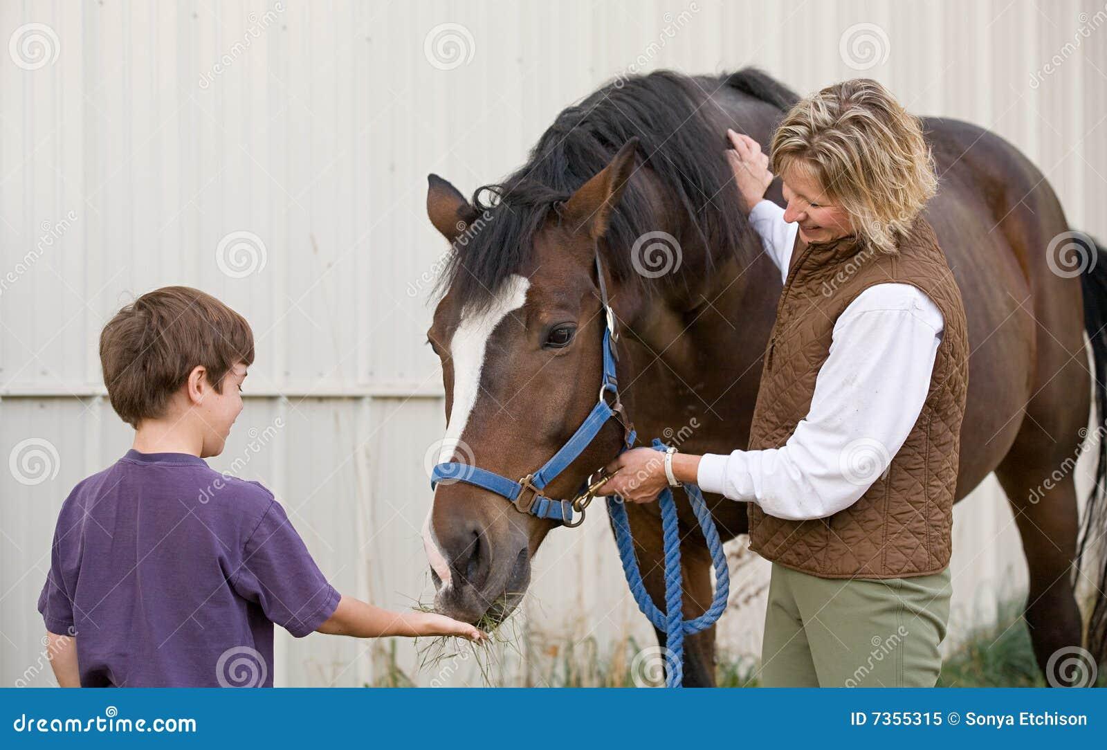ταΐζοντας άλογο αγοριών