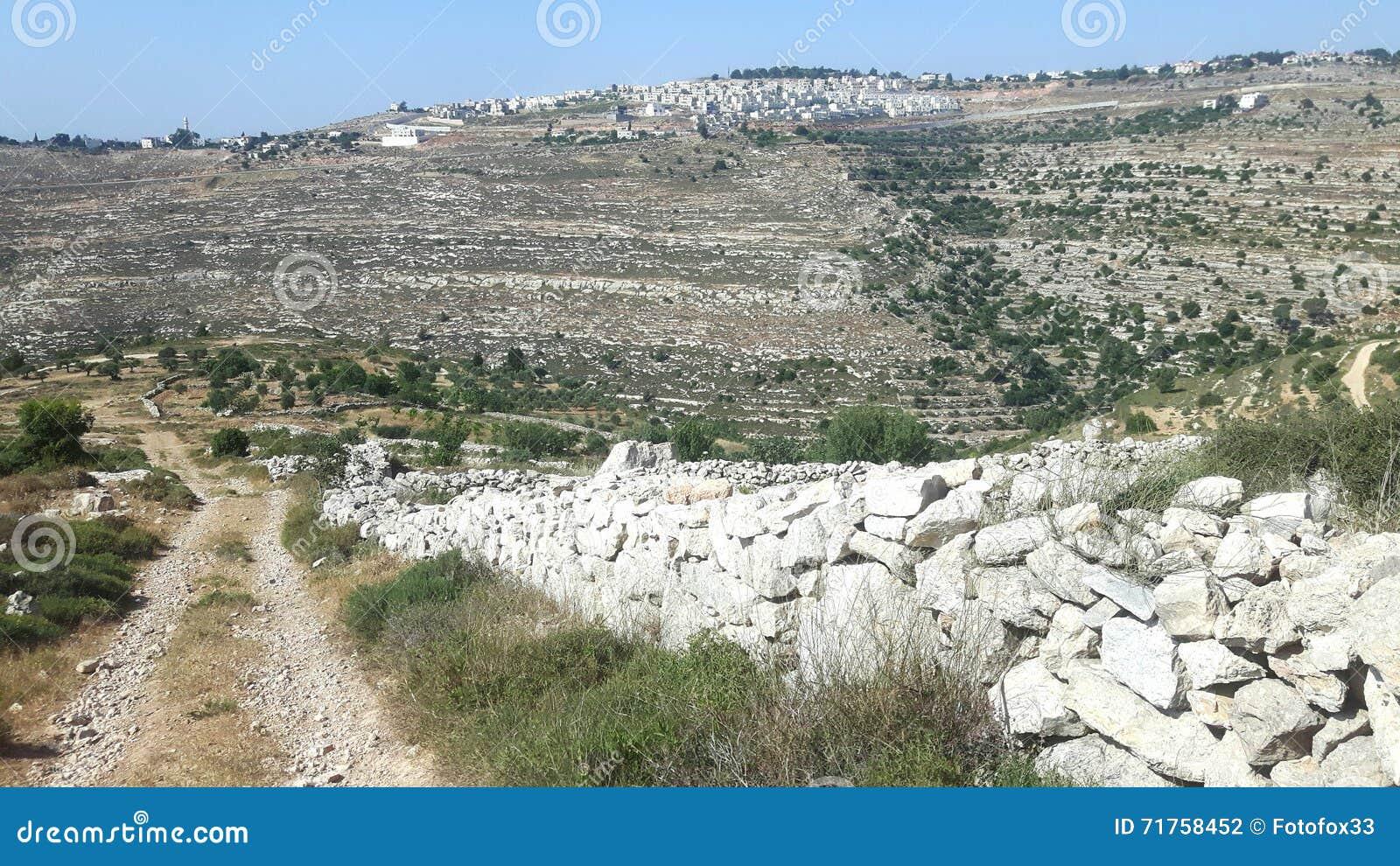 Τακτοποίηση και πορεία στην Παλαιστίνη