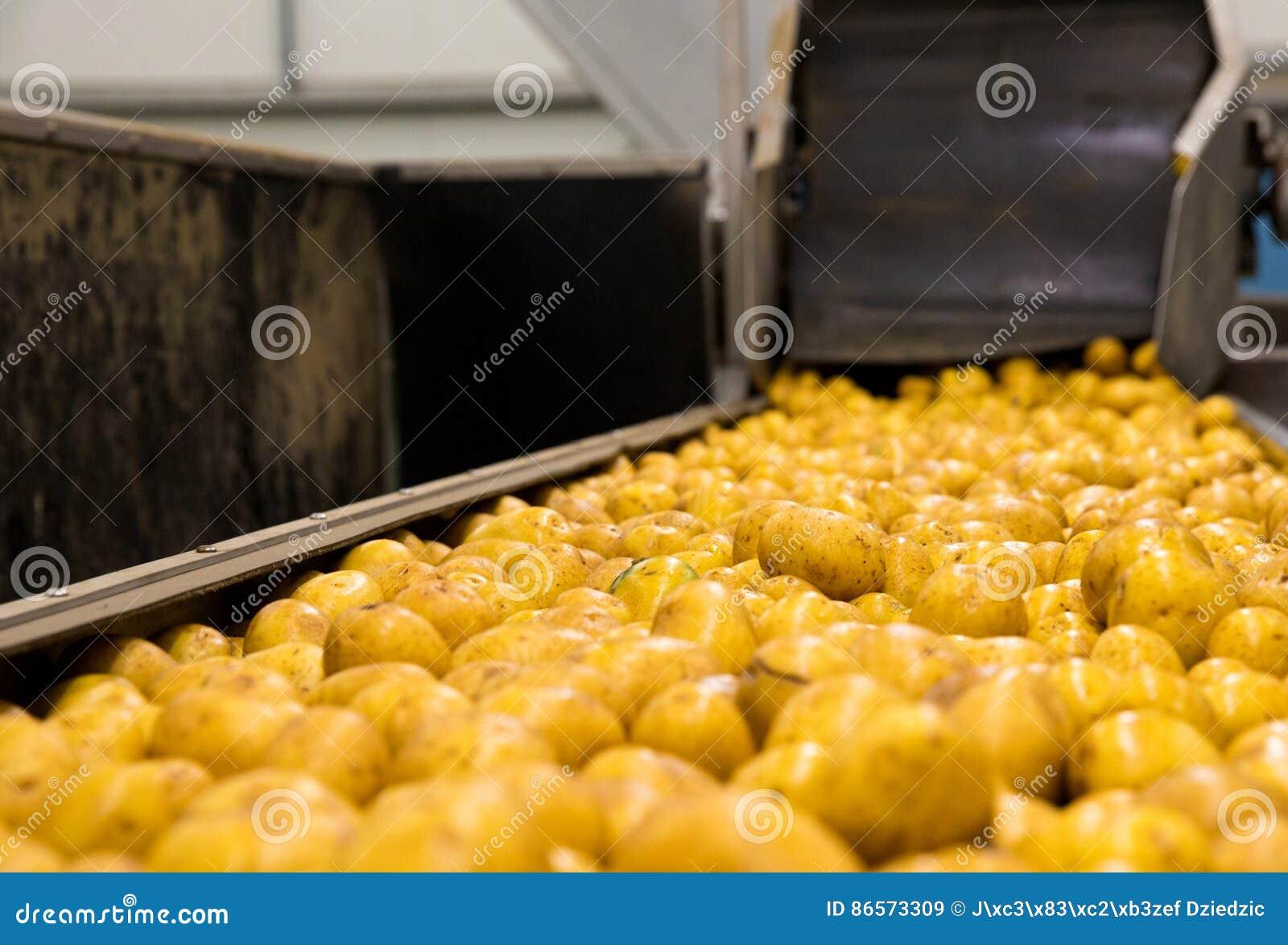 Ταξινομώντας εγκαταστάσεις πατατών