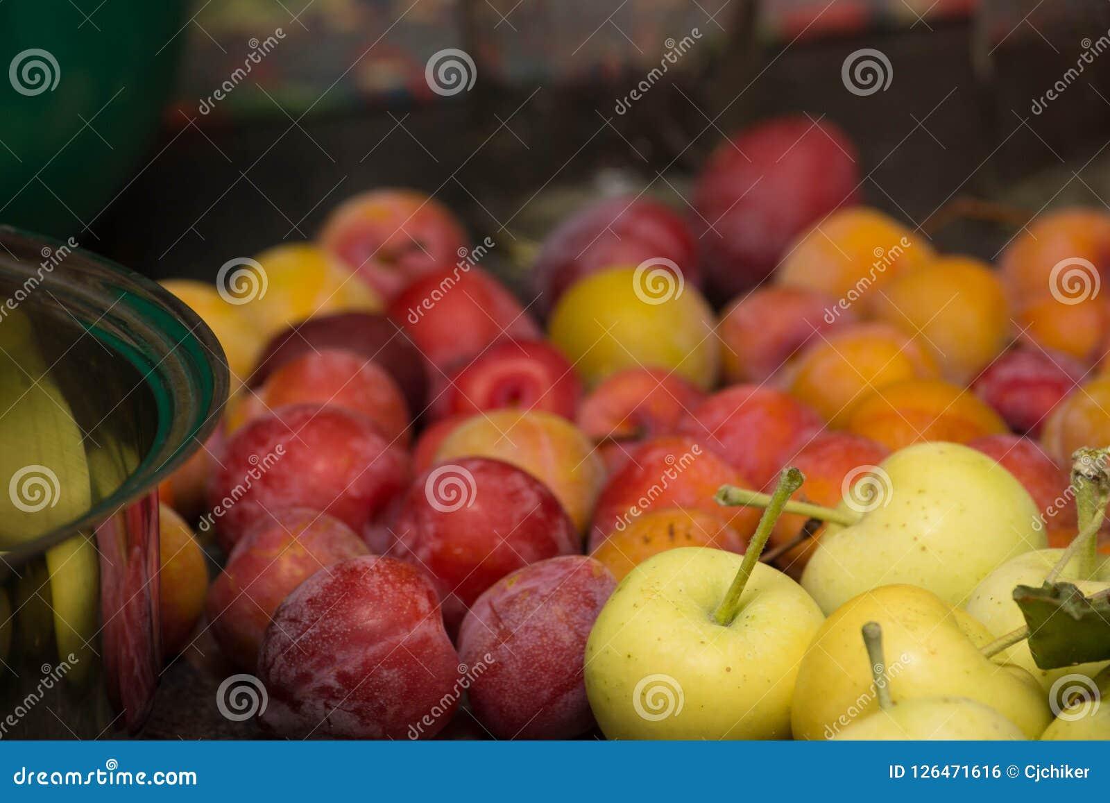 Τα άγρια μήλα και τα δαμάσκηνα καβουριών για τη ζελατίνα κλείνουν επάνω τη λεπτομέρεια