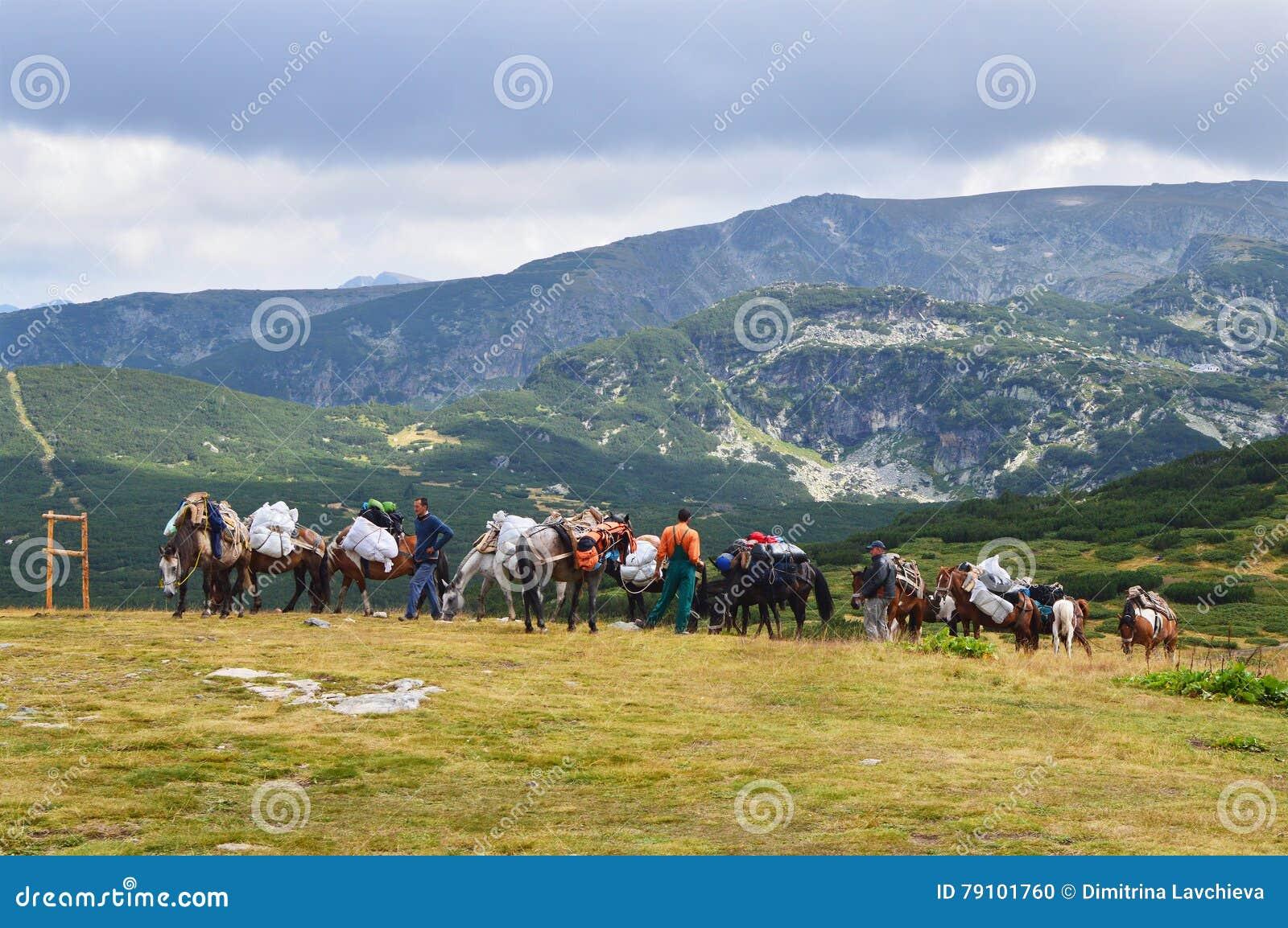 Τα άτομα με το άλογο φορτώνουν στο βουνό