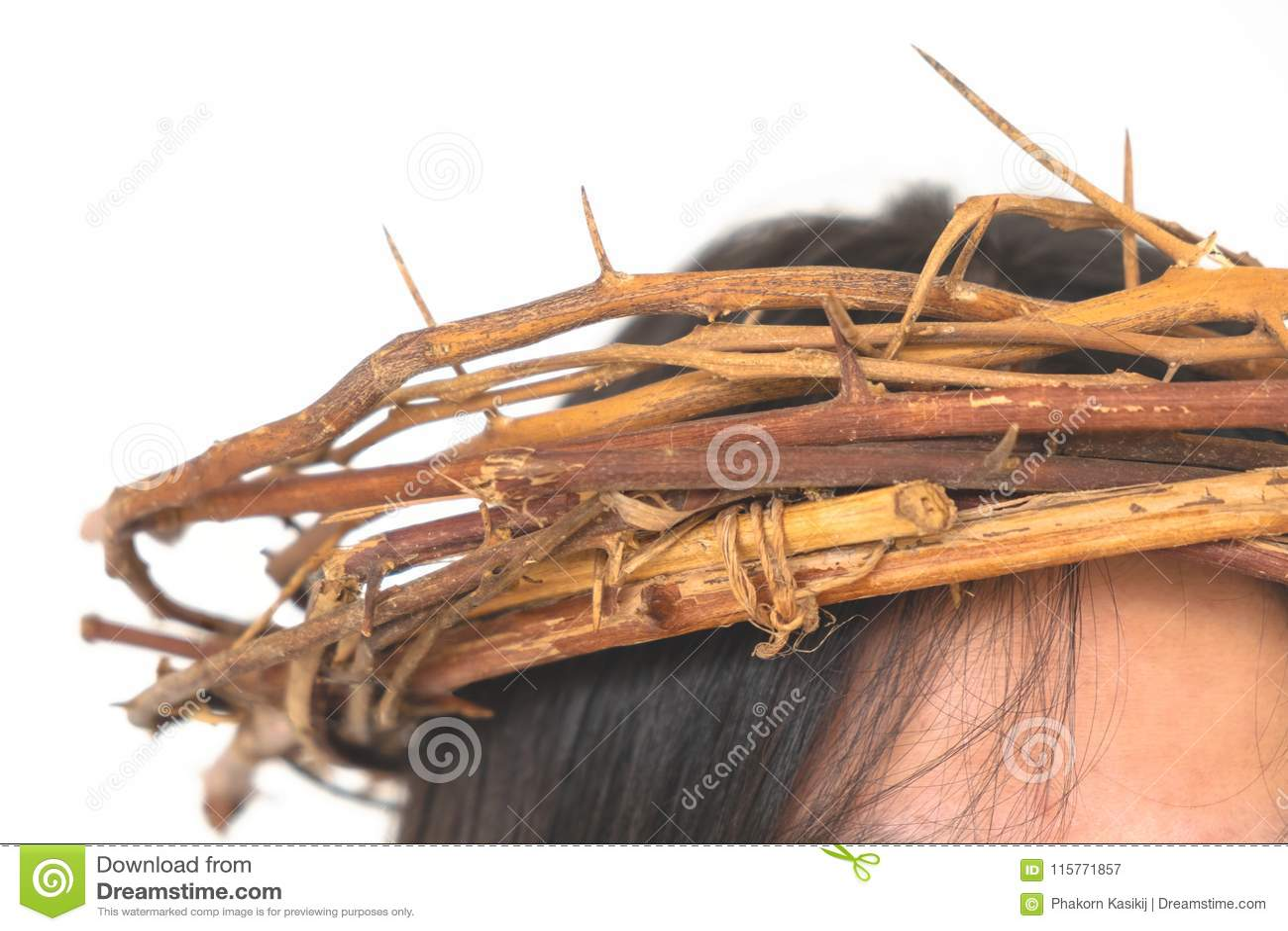 Τα αγκάθια κορωνών στο κεφάλι απομόνωσαν το άσπρο υπόβαθρο