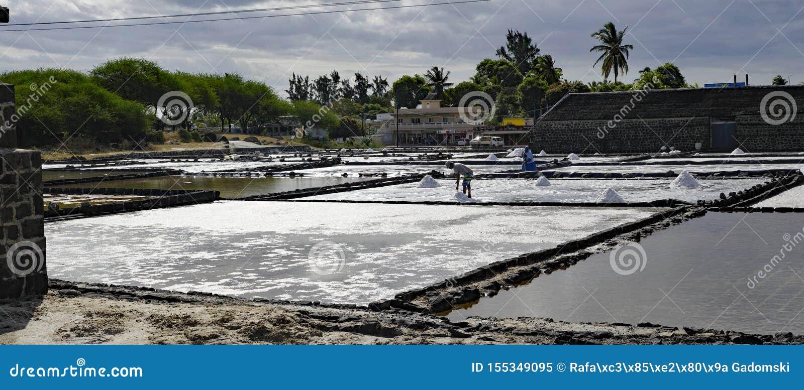 Τα αλατισμένα τηγάνια Tamarin είναι ένα δημοφιλές τουριστικό αξιοθέατο με τις τετραγωνικές λεκάνες αργίλου τούβλου Μαυρίκιος