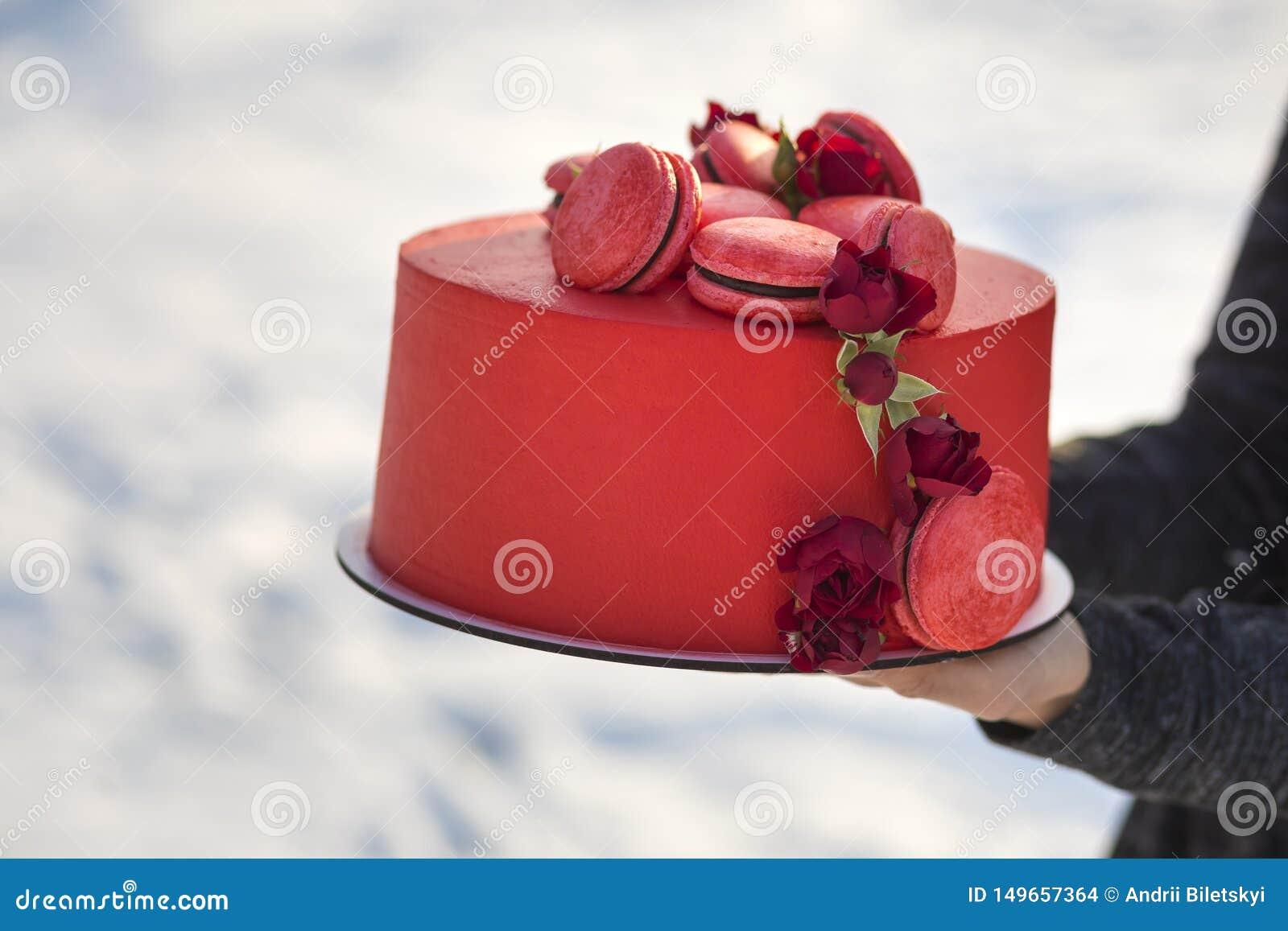 Τα θηλυκά χέρια που κρατούν το πιάτο με το φρέσκο εύγευστο yummy σπιτικό κόκκινο κέικ με τα macarons που διακοσμήθηκαν με τα λουλ
