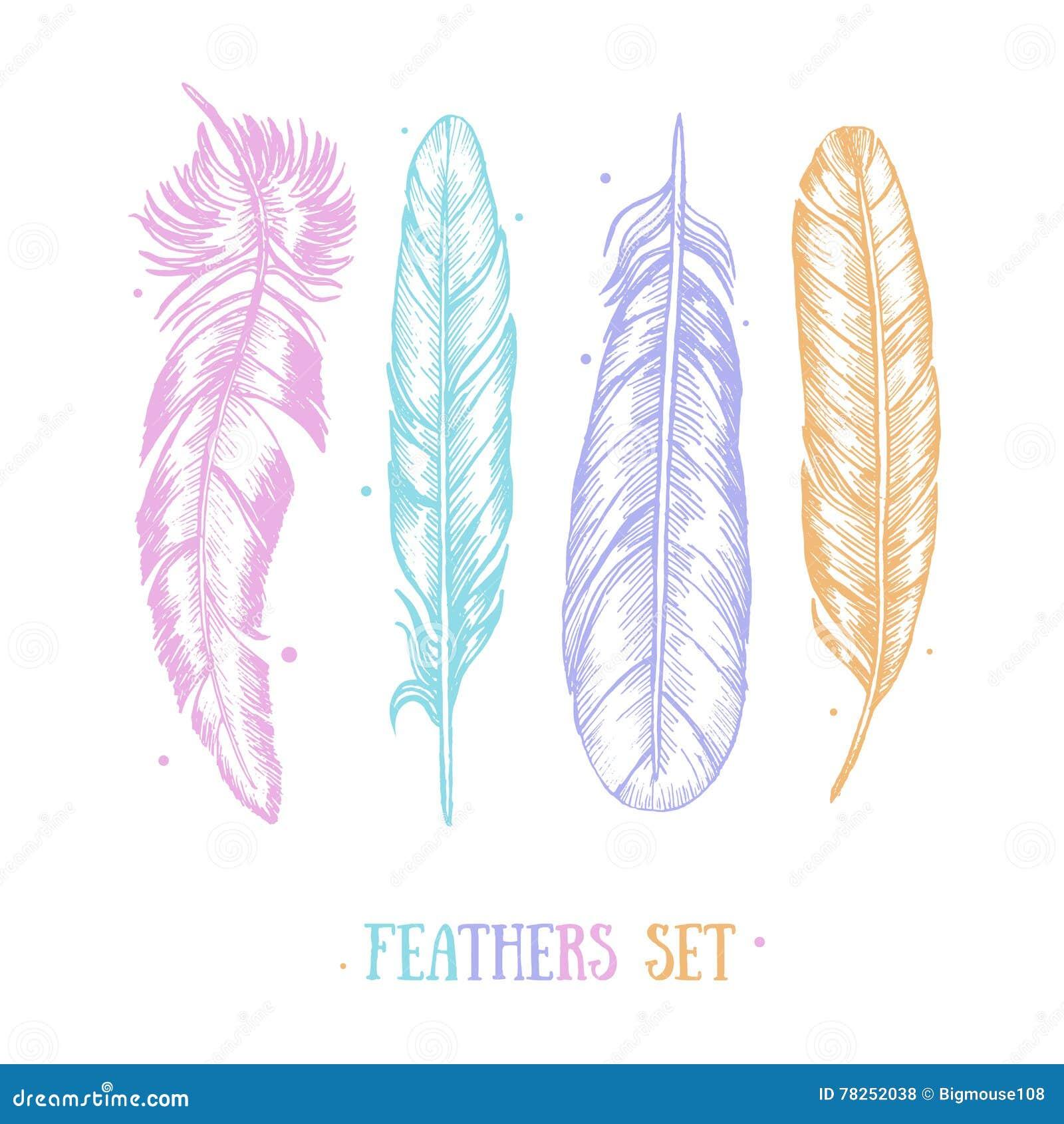 Τα φτερά καθορισμένα το χέρι σύρουν την κάρτα σκίτσων διάνυσμα