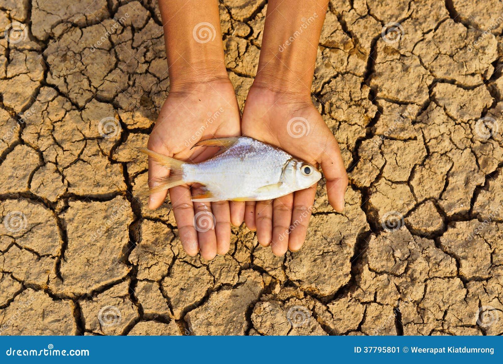 Τα χέρια που κρατούν τα ψάρια πέθαναν στη ραγισμένη γη