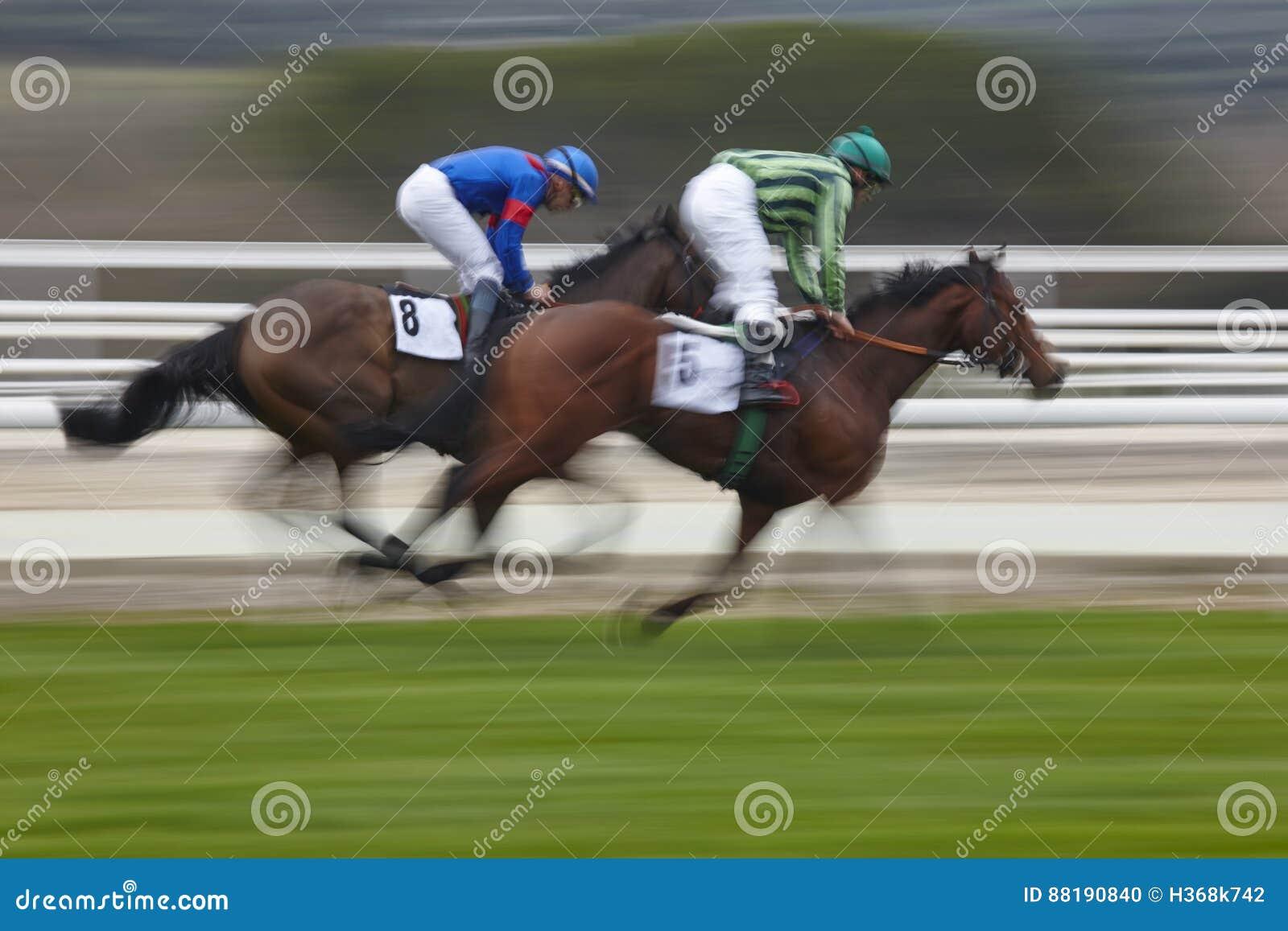 Τελική βιασύνη αγώνων αλόγων Αθλητισμός ανταγωνισμού ιππόδρομος Νικητής