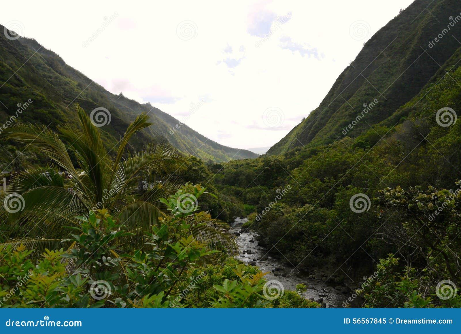 Download της Χαβάης τοπίο στοκ εικόνα. εικόνα από hawaiian, έξυπνο - 56567845