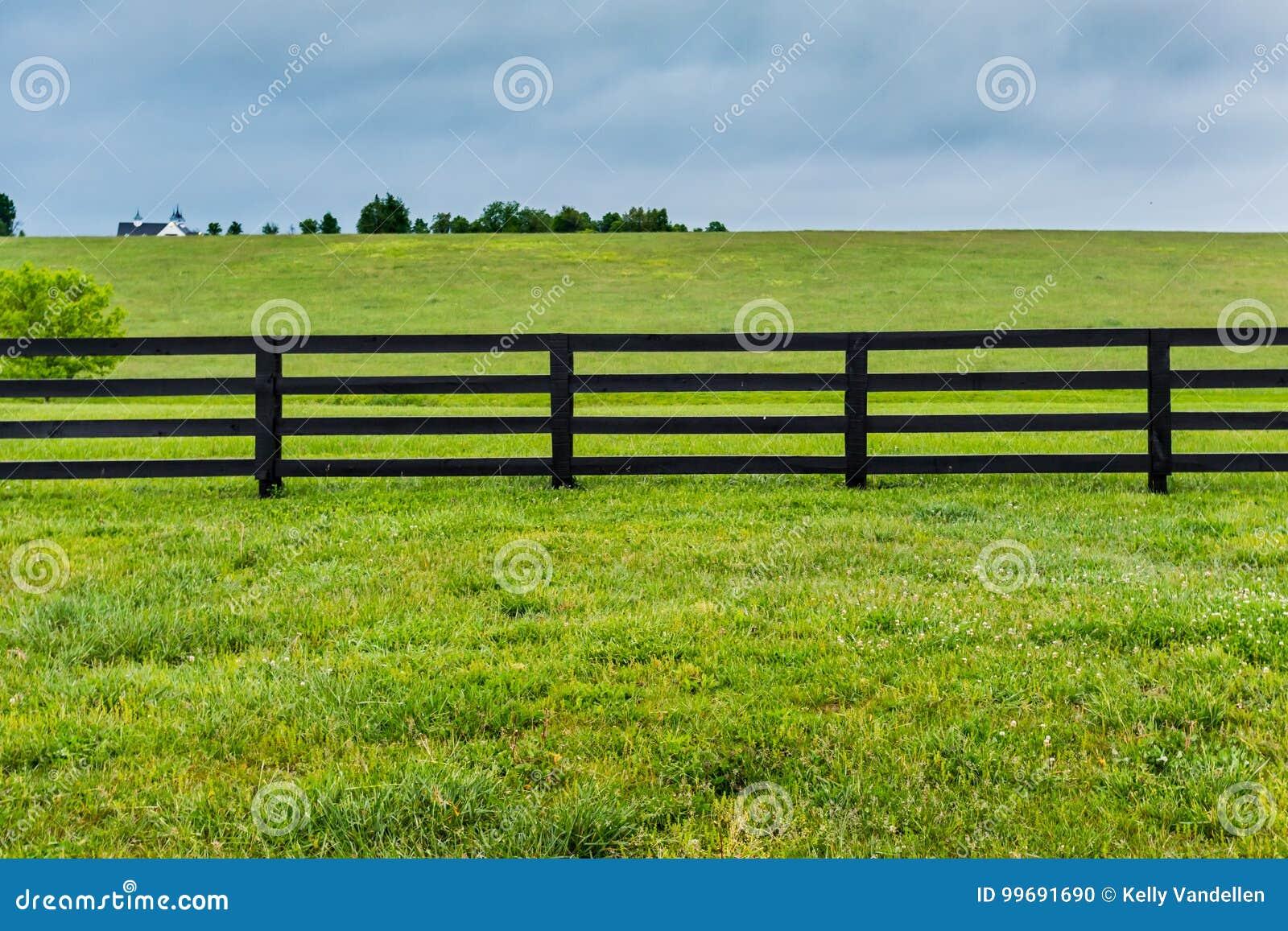 Τμήμα του φράκτη και του λιβαδιού αλόγων