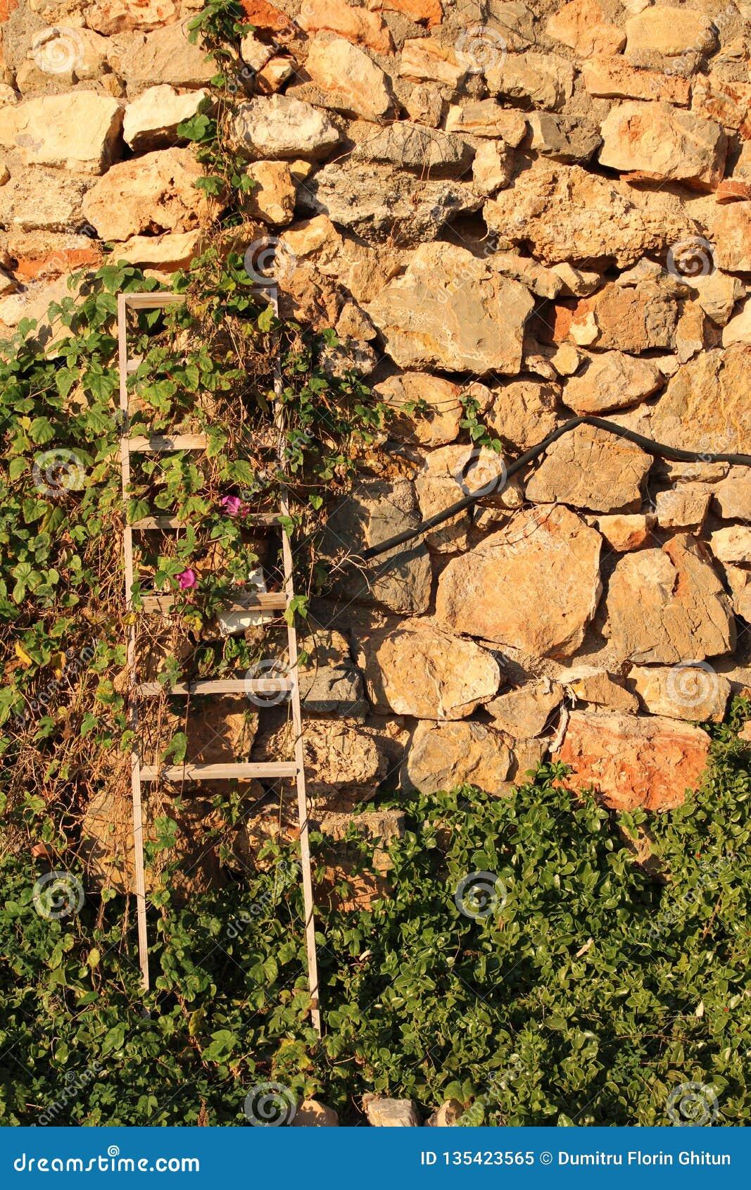 Τοίχος των συσσωρευμένων πετρών