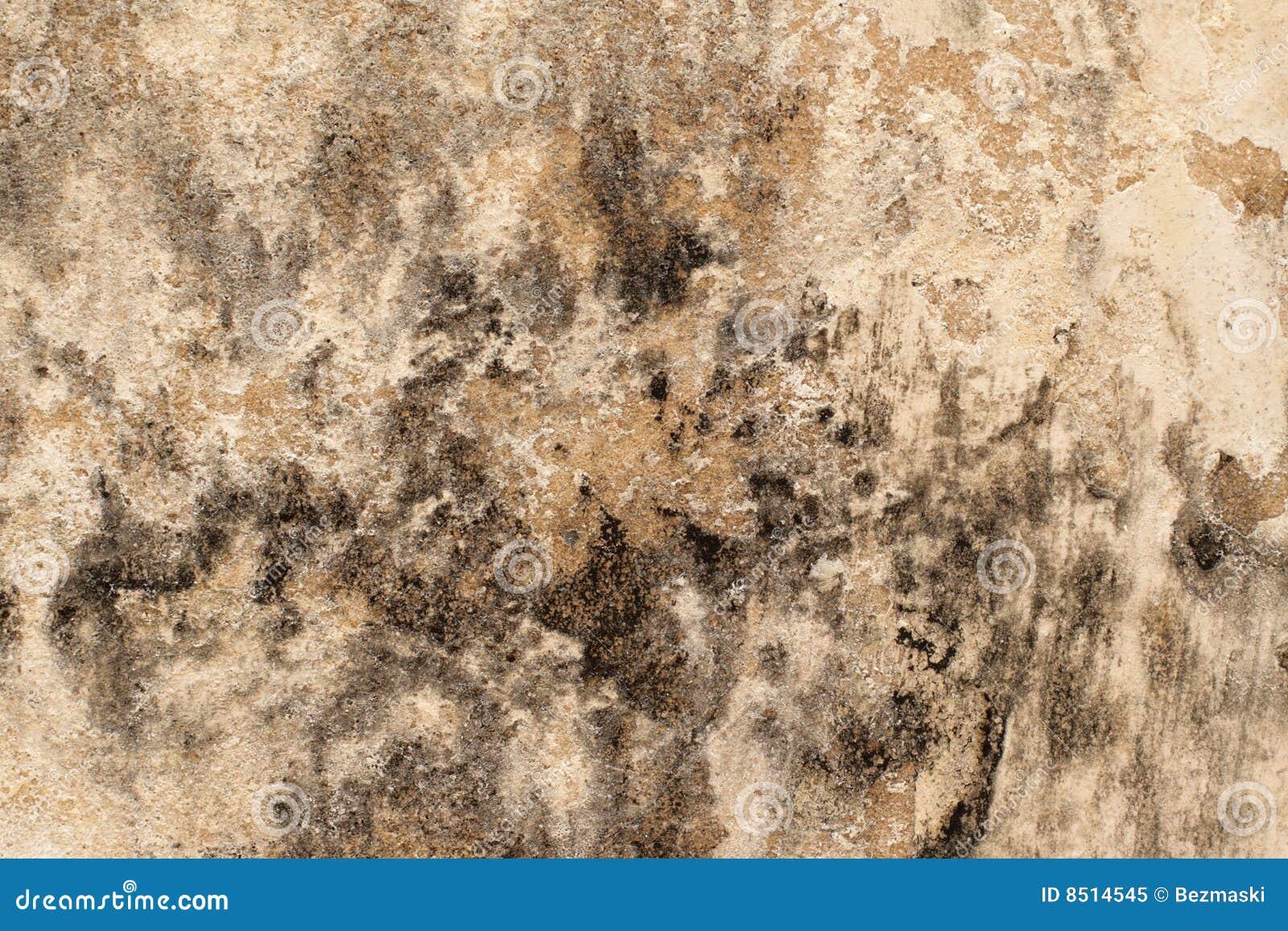 τοίχος φορμών