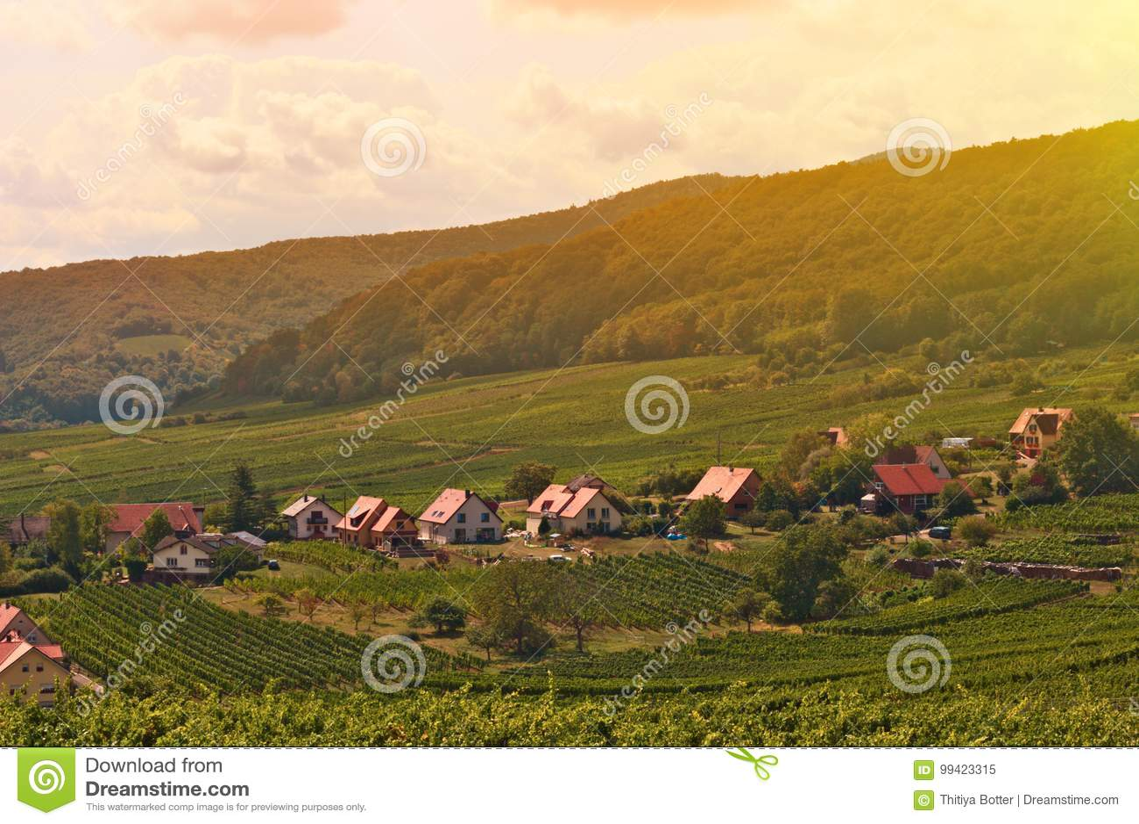 Τοπίο ατμόσφαιρας του ρομαντικού μικρού χωριού της Ευρώπης με το χωριό αμπελώνων