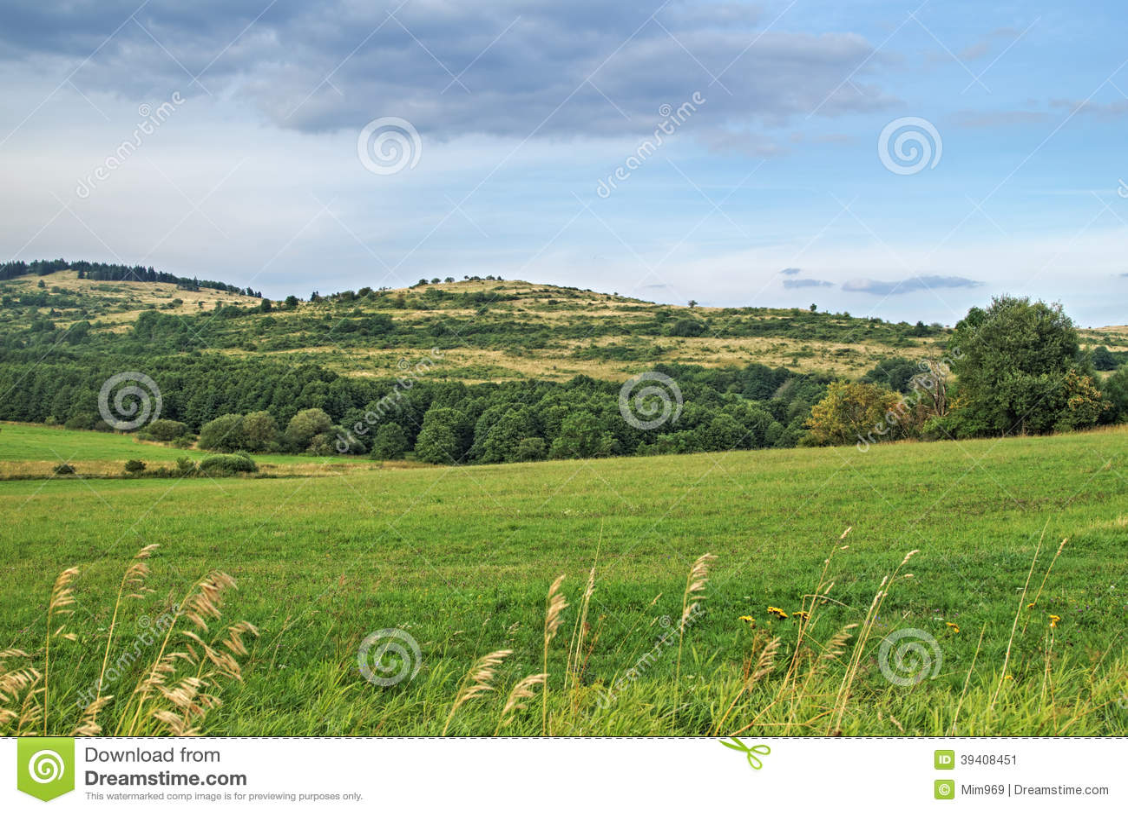 Τοπίο με τους πράσινους τομείς και τους λόφους που ευθυγραμμίζονται με τα φυλλώδη δέντρα