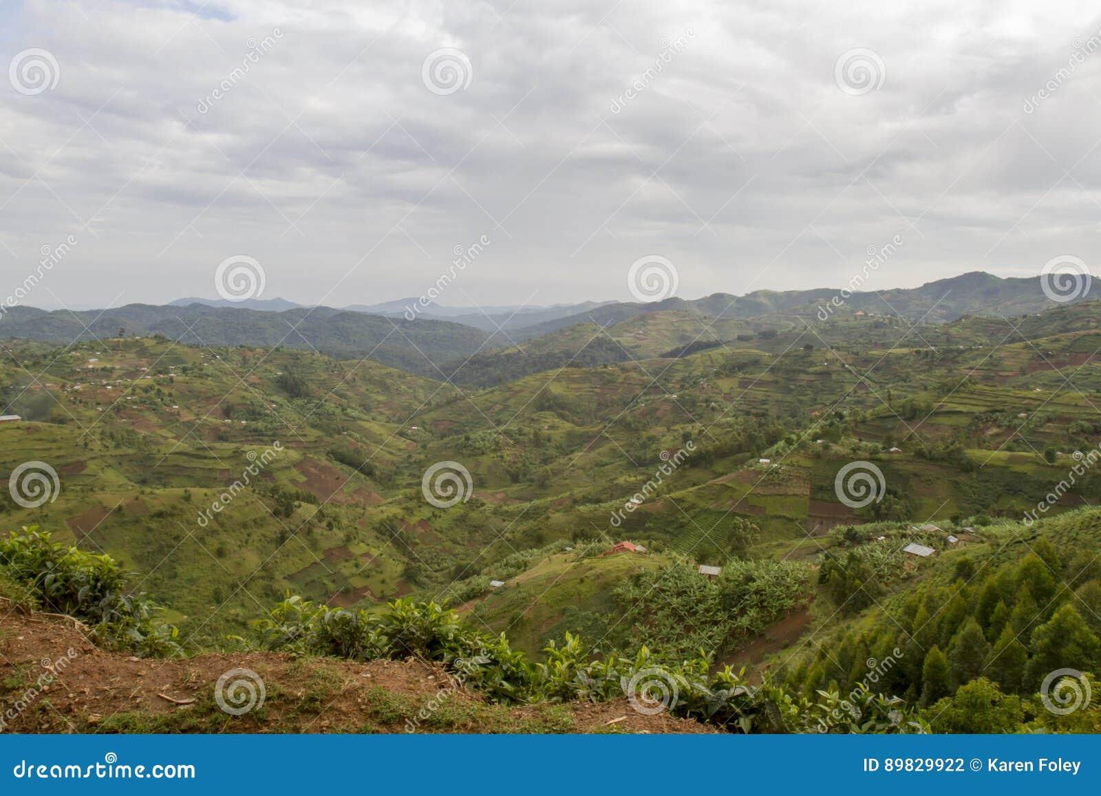 Τοπίο Ρουάντα, Αφρική βουνοπλαγιών