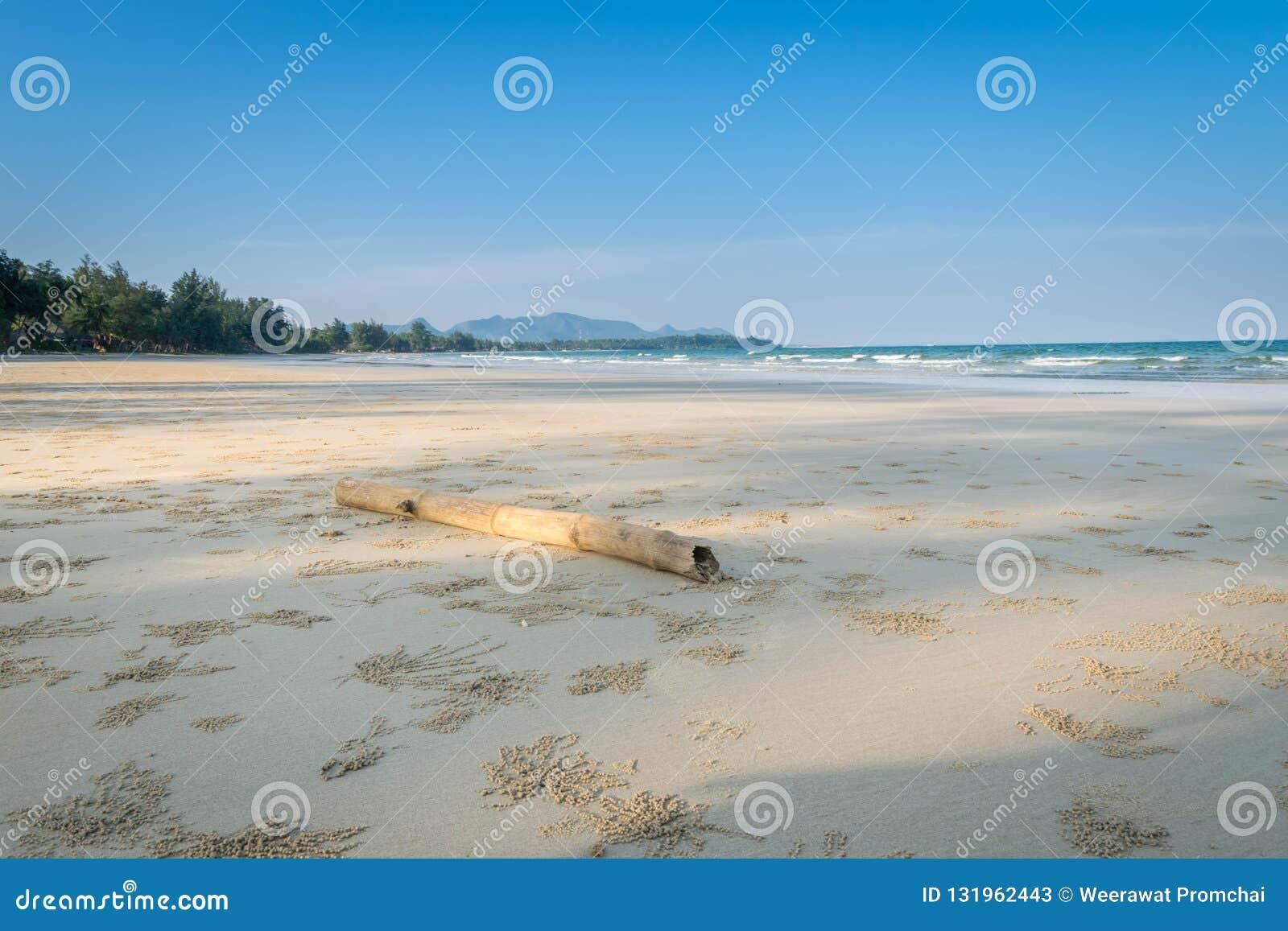 Τοπίο της τροπικής παραλίας νησιών παραδείσου