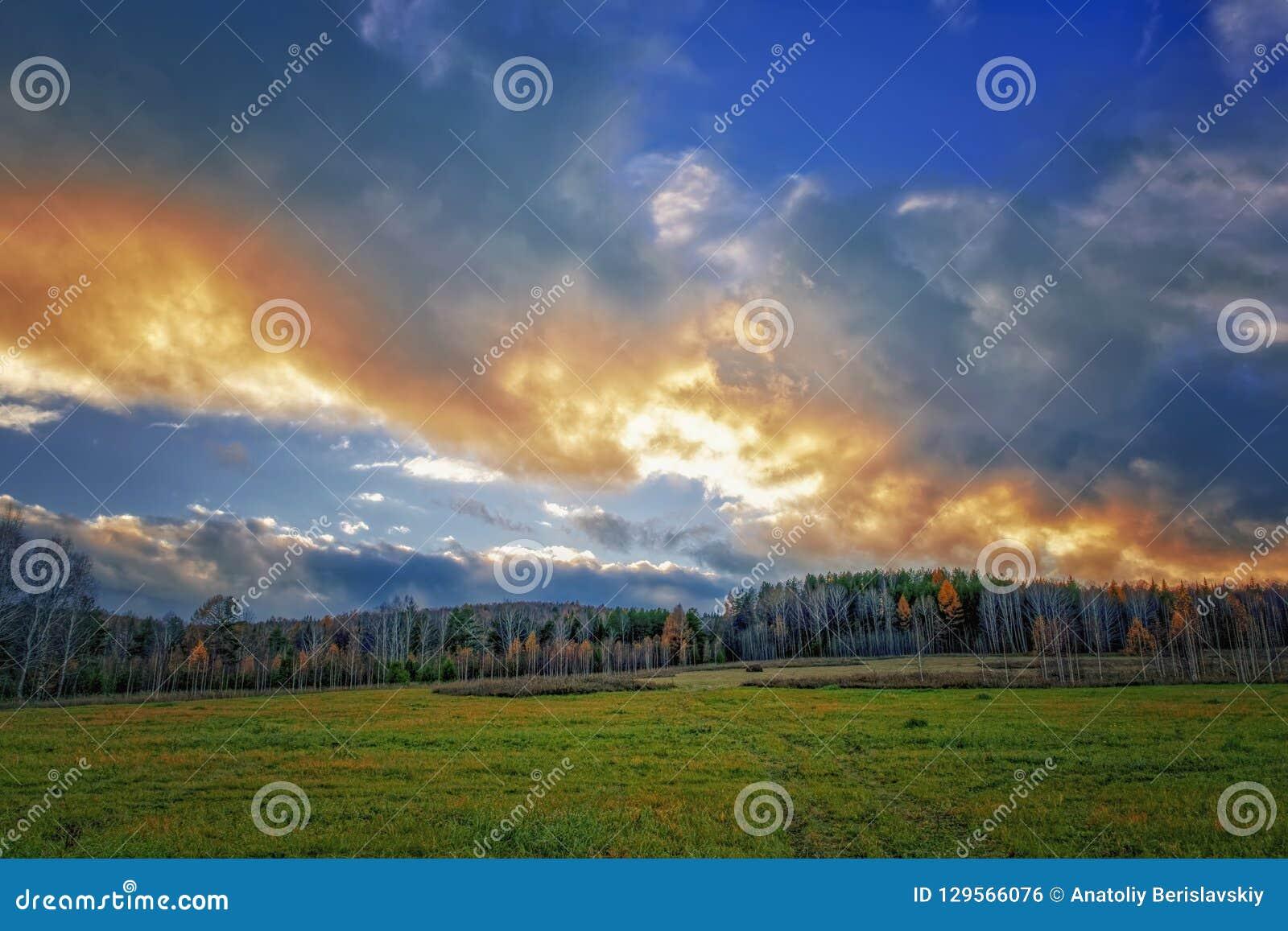 Τοπίο φθινοπώρου με την ξηρά χλόη στο λιβάδι στο υπόβαθρο του δάσους και του ουρανού ηλιοβασιλέματος