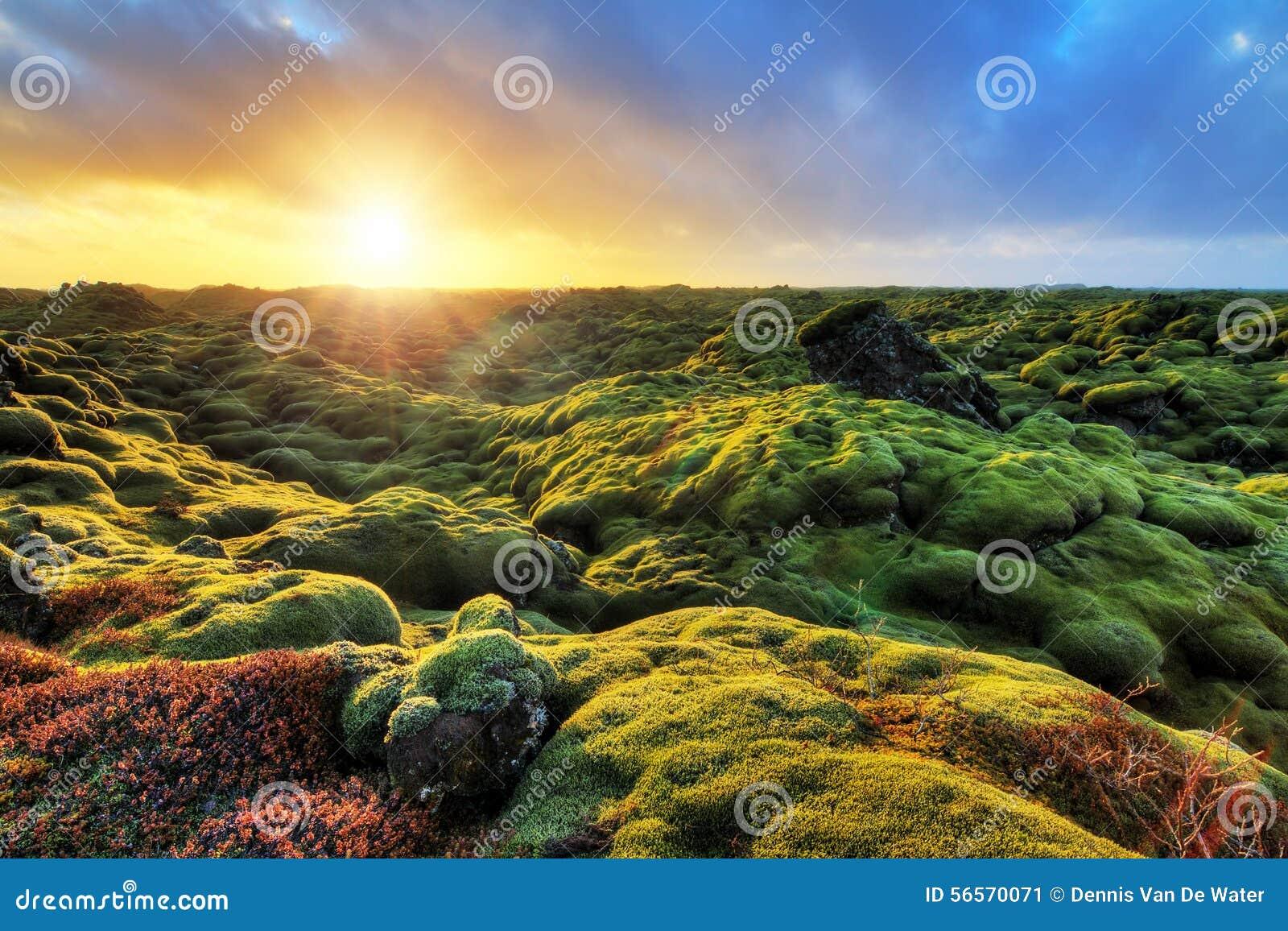 Download Τοπίο Eldhraun ανατολής στοκ εικόνα. εικόνα από φαντασία - 56570071