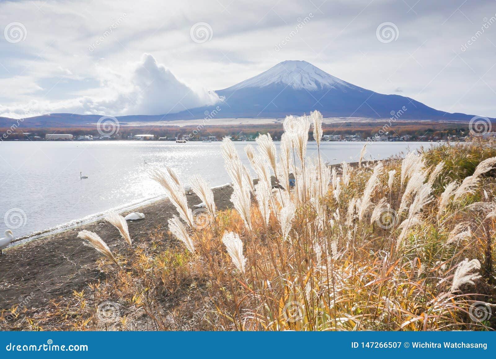Τοποθετήστε το Φούτζι στη λίμνη Yamanaka στην εποχή φθινοπώρου της Ιαπωνίας