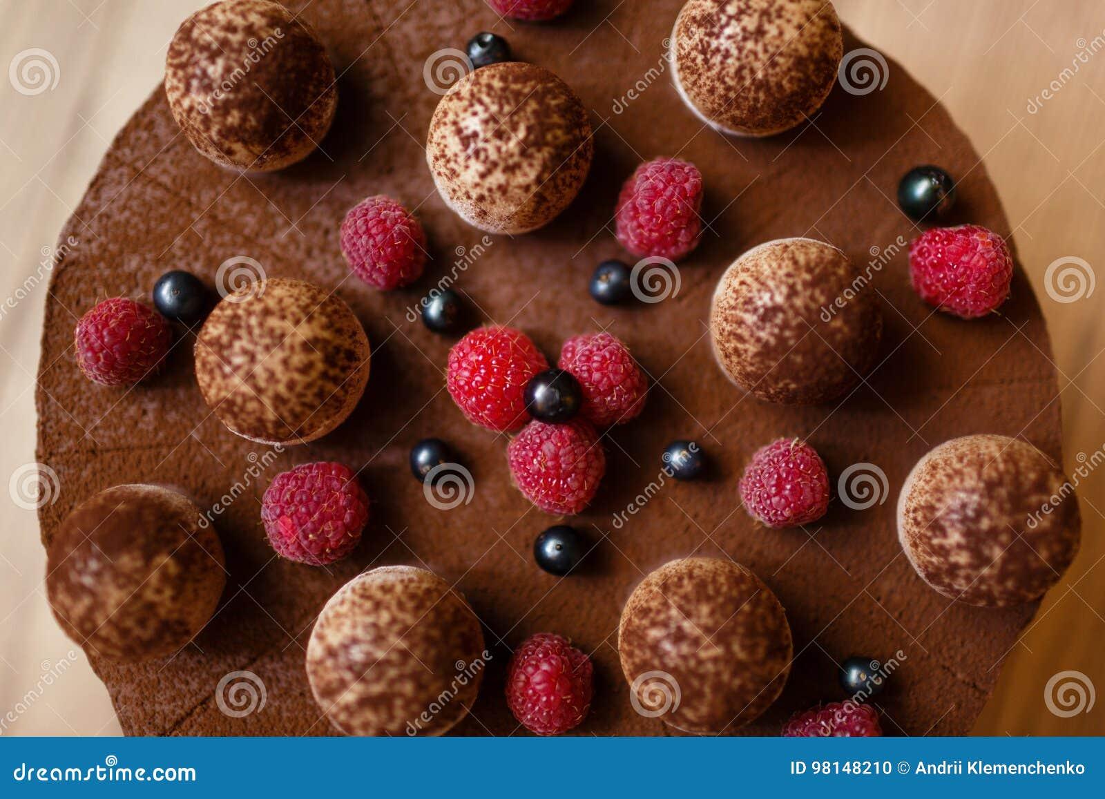 Τοπ άποψη ενός κέικ επιδορπίων από το τυρί mascarpone, το espresso καφέ, τα αυγά κοτόπουλου, τη ζάχαρη, τα μπισκότα, και τη σοκολ