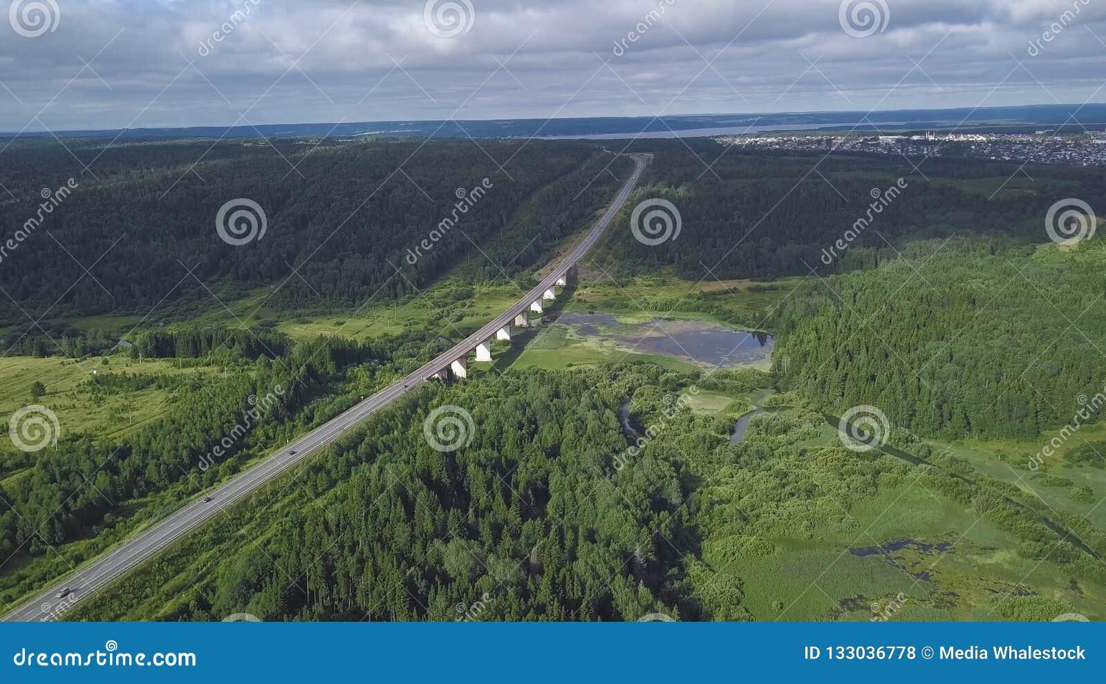 Τοπ άποψη της γέφυρας που περνά μέσω στο δασικό συνδετήρα Περάσματα εθνικών οδών μέσω του έλους στο δάσος στην πόλη στον ορίζοντα