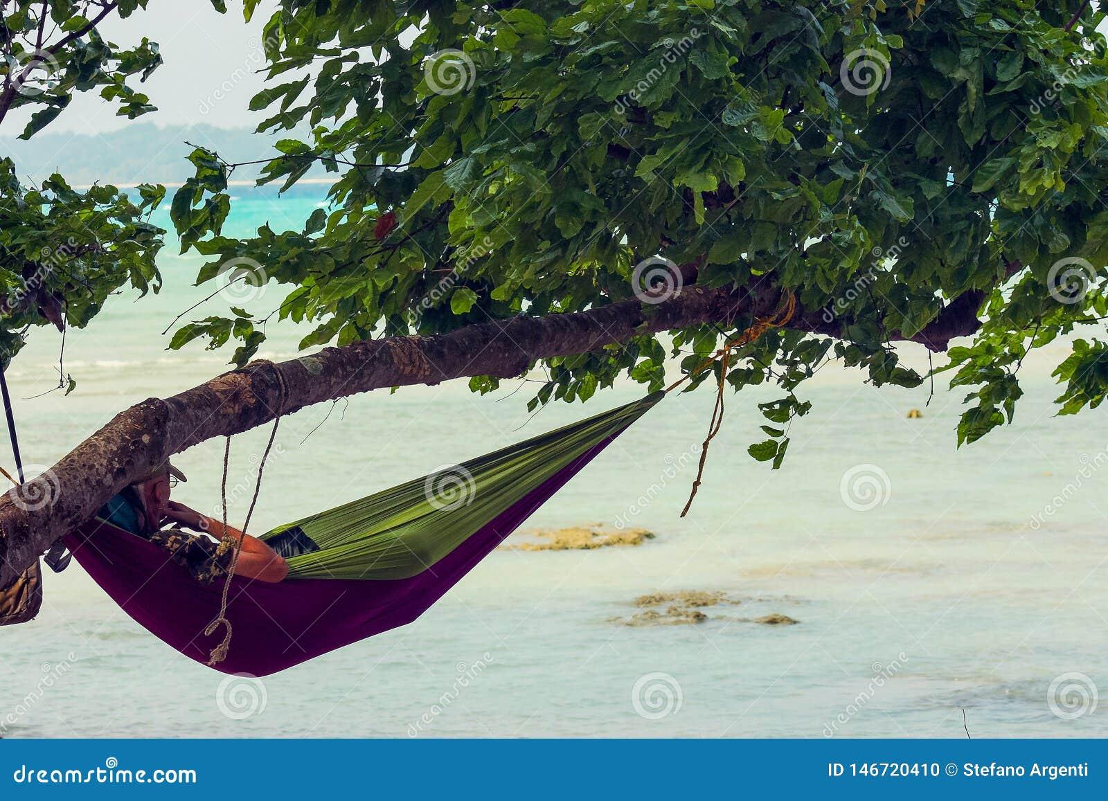 Τουρίστας σε μια αιώρα που κρεμά από ένα δέντρο