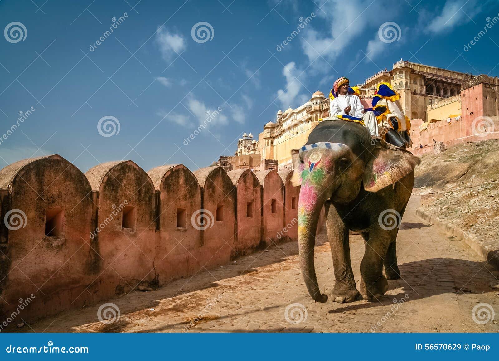 Download Τουρίστες στον ελέφαντα εκδοτική στοκ εικόνα. εικόνα από ενισχυμένος - 56570629