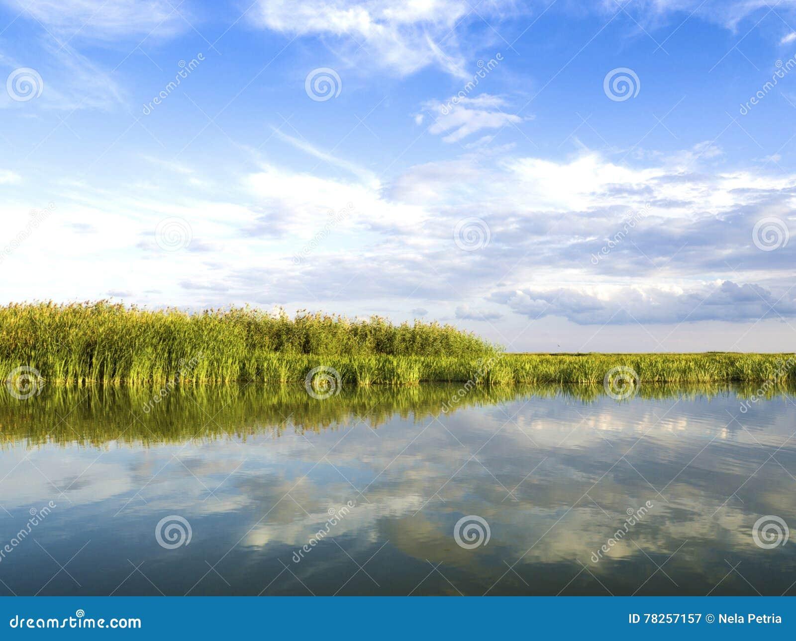 Του δέλτα λιμνοθάλασσα Δούναβη